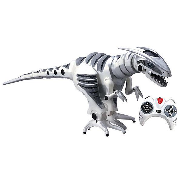 Робот - Динозавр 8095,  WowWeeРоботы<br>Это не просто робот - это настоящий огромный свирепый динозавр! Каждый мальчишка захочет завести такого дома. Робот имеет датчики касания, благодаря которым он может видеть препятствия и обходить их.  Можно управлять движениями робота с помощью пульта ДУ, заставлять его бить хвостом, кусаться и охранять. Динозавр издает множество самых разнообразных звуков - фыркает, хрипит, визгливо кричит. Вы можете управлять настроением вашего робота -  он может быть настороженным, игривым и хищным. Например, если прикоснуться к датчику на нижней челюсти, когда робот в игривом настроении, то он «мурлыкнет» и наклонит голову к вашей руке. Если дать роботу в зубы какую-нибудь вещь, например тряпку, то робот начинает вести себя как щенок, пытаясь ее отобрать.    <br><br>Дополнительная информация:<br><br>- Материал: пластик, металл.<br>- Высота: 77 см.<br>- Походка хищника (движется по-охотничьи).<br>- Обычная походка (перед, назад, влево, вправо со свойственными динозаврам движениями).<br>- Бегущая походка (побежит, скаля зубы).<br>- Движение головы. <br>- Движение хвостом. <br>- Хватка и укус (специальная команда нападения).<br>- Несколько режимов настроения.<br>- Подвижные челюсти и язык.<br>- Сенсоры касания подбородка, пасти, хвоста. <br>- Датчики IR (реагируют на движения рук) .<br>- Пульт ДУ.<br>- Элемент питания: для робота - 6 батареек АА, для пульта - 3 батарейки АА (не входят в комплект).<br>- Звуковые эффекты.<br>- Световые эффекты.<br>- Комплектация: робот, пульт ДУ, инструкция.<br><br>Робота - Динозавра 8095,  WowWee можно купить в нашем магазине.<br><br>Ширина мм: 840<br>Глубина мм: 310<br>Высота мм: 270<br>Вес г: 3419<br>Возраст от месяцев: 96<br>Возраст до месяцев: 168<br>Пол: Мужской<br>Возраст: Детский<br>SKU: 1525807