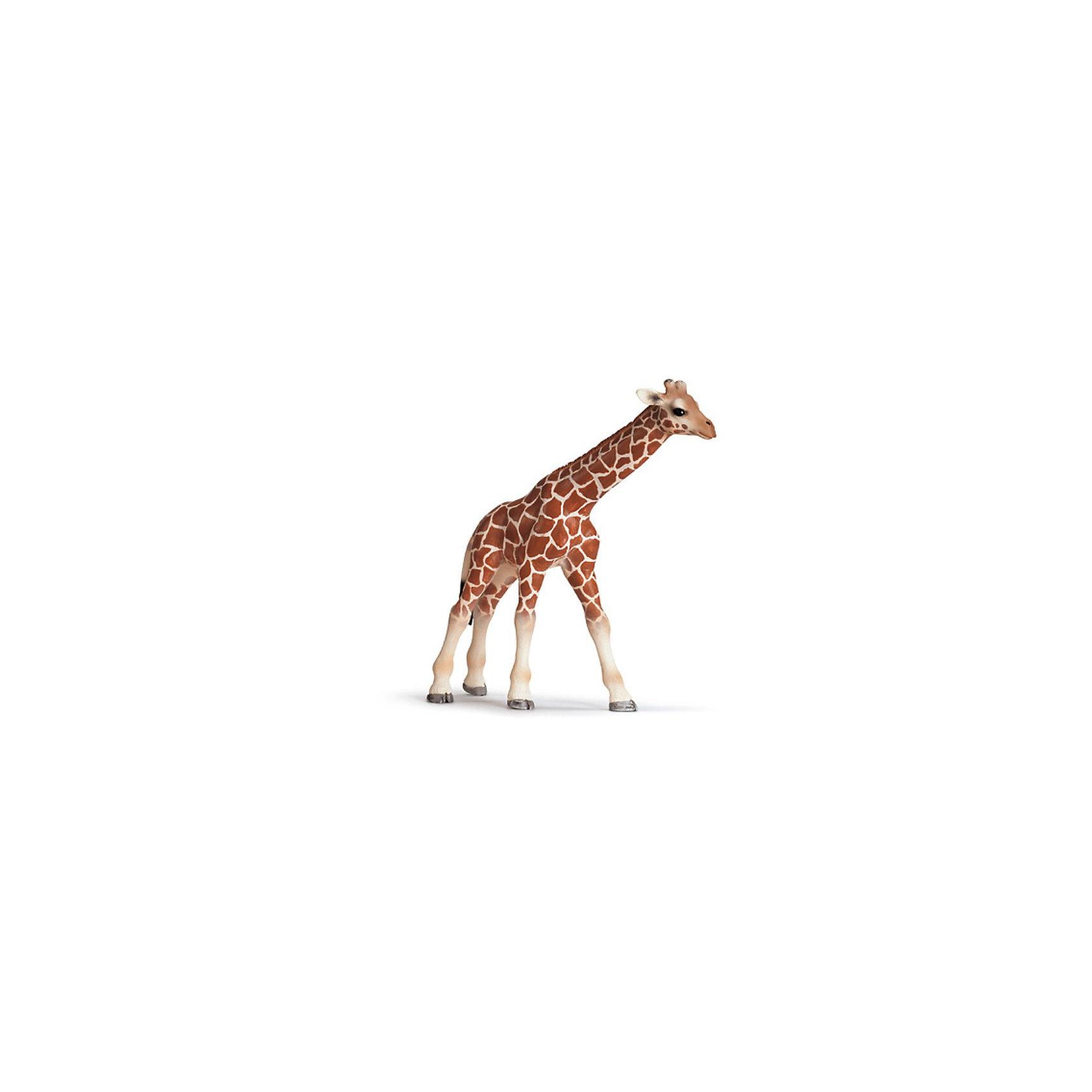 Schleich Schleich Детеныш жирафа. Серия Дикие животные животные серия антистресс альбом