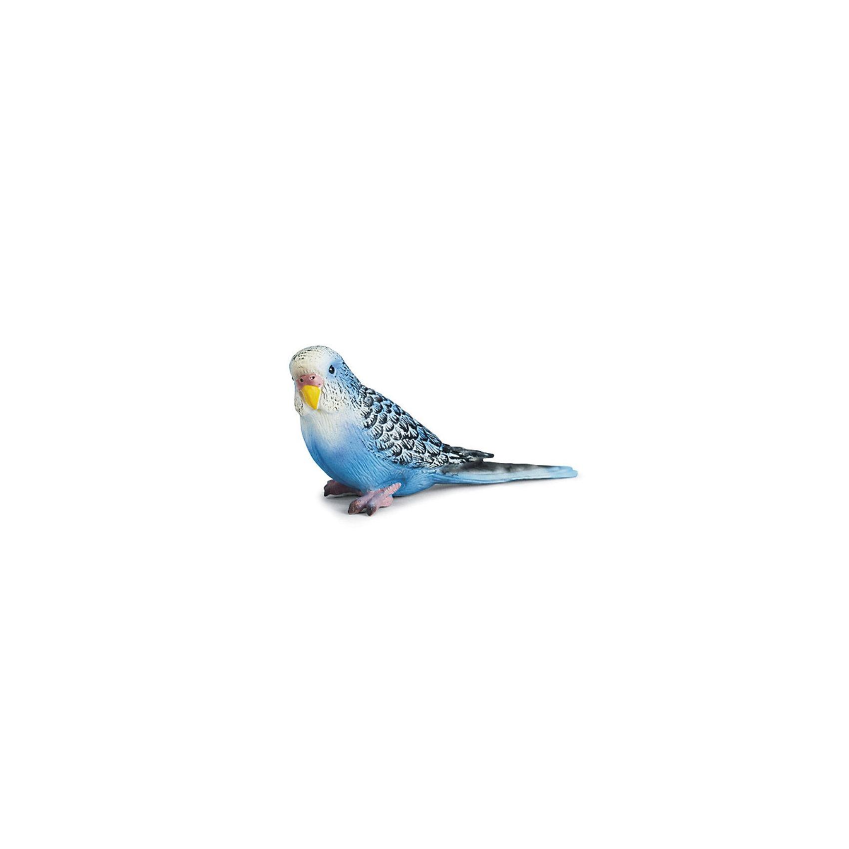 Schleich Волнистый попугайчик, голубой. Серия