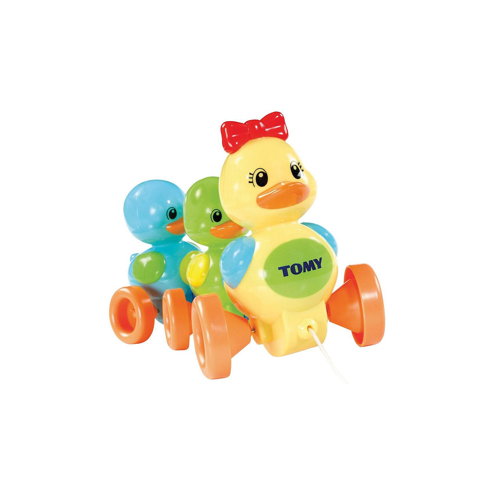 Игрушка-каталка «Семейство уточек», TOMYРазвивающая игрушка-каталка «Семейство уточек» известного бренда TOMY (Томи) из серии PLAY TO LEARN.<br><br>Только Ваш малыш дёрнет за верёвочку и потянет игрушку за собой, как семейство из троих утят начнёт радостно напевать милейшую утиную песенку, следуя за малышом!<br><br>Красочная игрушка представляет собой каталку из трёх разноцветных уточек: мамы и её детишек-утят. Впереди игрушки находиться верёвочка, за которую Ваш малыш может катать семейство уточек за собой почти по любой поверхности! Такая прогулка всегда сопровождается забавными звуками. Потянув за верёвочку, утята начинают задорно петь. <br><br>Песенки утят также можно переключать с помощью красного бантика на голове у мамы-утки. Более того, уникальная конструкция каталки позволяет семейству утят при движении переваливаться от одного бока к другому, что очень похоже на походку настоящих уток!<br><br>С помощью этой каталки у Вашего ребёнка будут развиваться восприятие и слуховые навыки, которые необходимы на ранних стадиях развития.  Толкая данную игрушку перед собой и ползая за ней, Ваш малыш сможет быстрее научиться ходить. <br><br>Дополнительная информация:<br><br>- Размер: 21 х 30 х 16 см (высота х ширина х глубина)<br>- Материал: высококачесвенный пластик<br>- Вес: 500 гр<br>- работает на трёх батарейках (входят в комплект)<br><br>Ширина мм: 160<br>Глубина мм: 300<br>Высота мм: 210<br>Вес г: 602<br>Возраст от месяцев: 6<br>Возраст до месяцев: 24<br>Пол: Унисекс<br>Возраст: Детский<br>SKU: 1602927