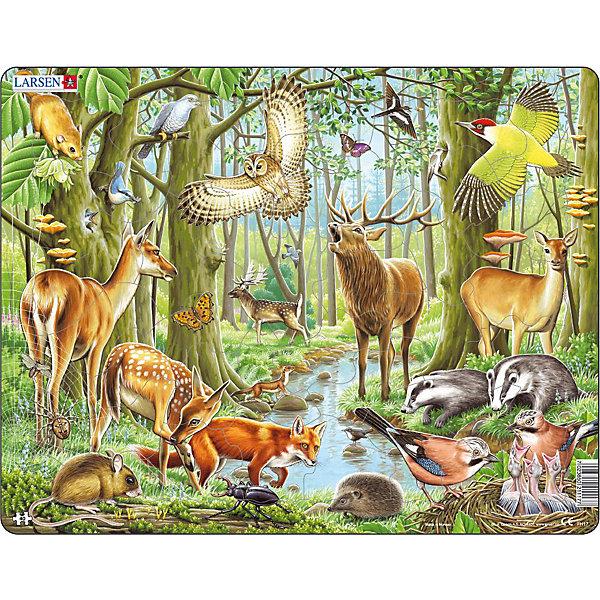 Пазл Европейский лес, 40 деталей, LarsenПазлы для малышей<br>Пазл Европейский лес, 40 деталей, Larsen (Ларсен) – это высококачественный обучающий пазл-рамка.<br>Яркий красивый пазл-рамка Европейский лес – это пазл на котором с фотографической точностью прорисованы обитатели и растительный мир леса. Пазл имеет специальную рамку с подложкой, на которой выдавлены контуры деталей, что облегчит процесс сборки. Детали пазла изготовлены из высококачественного плотного трехслойного картона. Они не деформируются, хорошо сцепляются друг с другом, не расслаиваются. Рисунок не стирается. Занятия по сборке пазла развивают образное и логическое мышление, пространственное воображение, память, внимание, усидчивость, координацию движений и мелкую моторику.<br><br>Дополнительная информация:<br><br>- Количество деталей: 40<br>- Размер собранной картинки: 36,5х28,5 см.<br>- Материал: плотный трехслойный картон<br>- Размер упаковки: 36,5х0,5х28,5 см.<br><br>Пазл Европейский лес, 40 деталей, Larsen (Ларсен) можно купить в нашем интернет-магазине.<br><br>Ширина мм: 367<br>Глубина мм: 286<br>Высота мм: 10<br>Вес г: 313<br>Возраст от месяцев: 48<br>Возраст до месяцев: 72<br>Пол: Унисекс<br>Возраст: Детский<br>Количество деталей: 40<br>SKU: 1604370