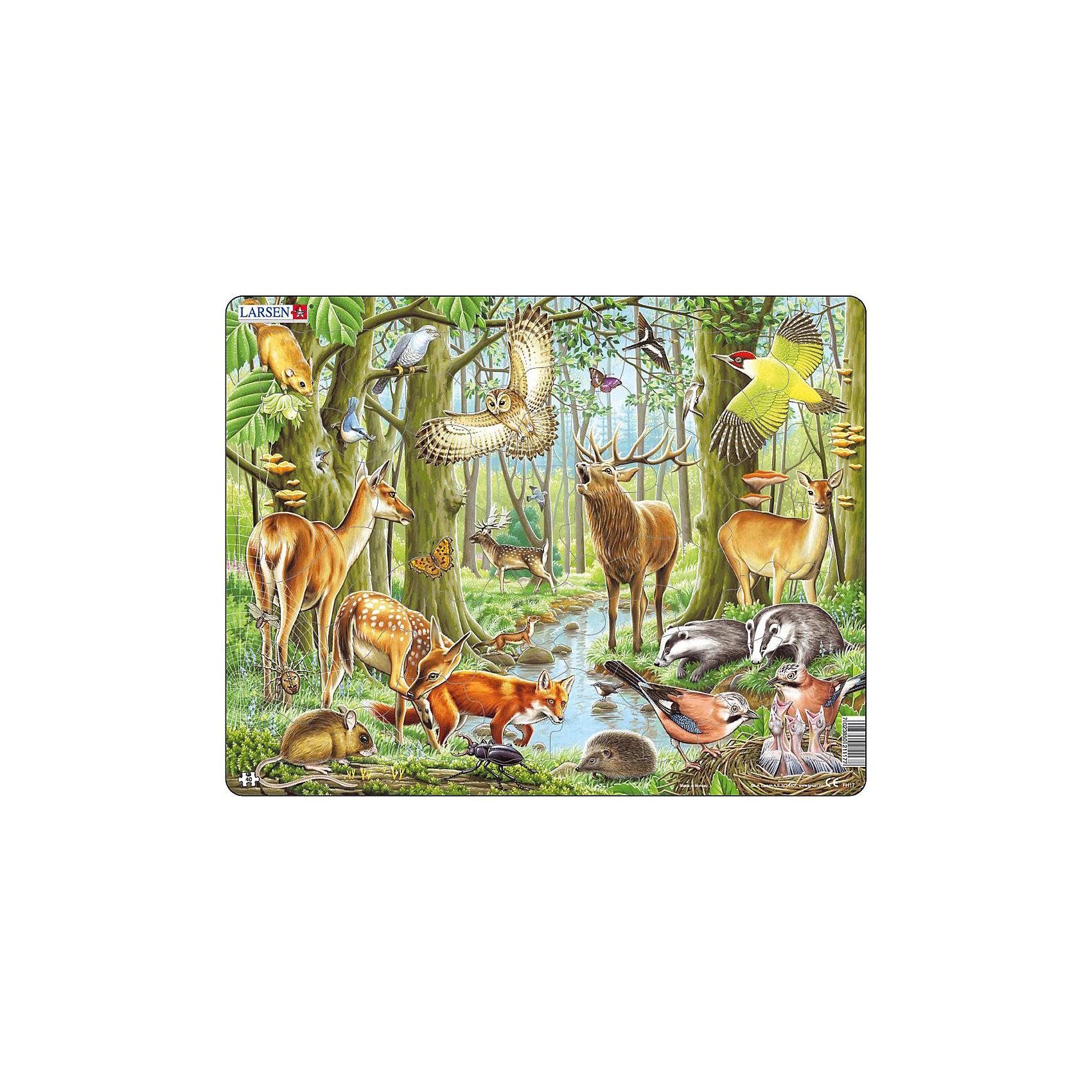 Пазл Европейский лес, 40 деталей, LarsenПазл Европейский лес, 40 деталей, Larsen (Ларсен) – это высококачественный обучающий пазл-рамка.<br>Яркий красивый пазл-рамка Европейский лес – это пазл на котором с фотографической точностью прорисованы обитатели и растительный мир леса. Пазл имеет специальную рамку с подложкой, на которой выдавлены контуры деталей, что облегчит процесс сборки. Детали пазла изготовлены из высококачественного плотного трехслойного картона. Они не деформируются, хорошо сцепляются друг с другом, не расслаиваются. Рисунок не стирается. Занятия по сборке пазла развивают образное и логическое мышление, пространственное воображение, память, внимание, усидчивость, координацию движений и мелкую моторику.<br><br>Дополнительная информация:<br><br>- Количество деталей: 40<br>- Размер собранной картинки: 36,5х28,5 см.<br>- Материал: плотный трехслойный картон<br>- Размер упаковки: 36,5х0,5х28,5 см.<br><br>Пазл Европейский лес, 40 деталей, Larsen (Ларсен) можно купить в нашем интернет-магазине.<br><br>Ширина мм: 367<br>Глубина мм: 286<br>Высота мм: 10<br>Вес г: 313<br>Возраст от месяцев: 48<br>Возраст до месяцев: 72<br>Пол: Унисекс<br>Возраст: Детский<br>Количество деталей: 40<br>SKU: 1604370