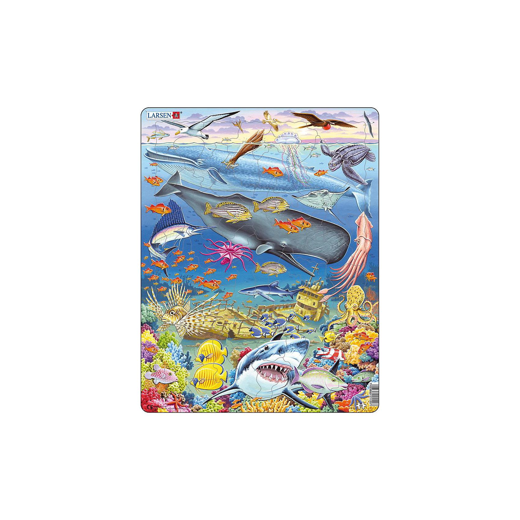 Пазл Киты, 66 деталей, LarsenПазл Киты, 66 деталей, Larsen (Ларсен) – этот обучающий и развивающий пазл, обязательно понравится вашему ребенку.<br>На красочном пазле Киты норвежской фирмы Ларсен представлены морские обитатели. Разнообразные киты, акулы, кальмары, множество ярких рыбок и кораллы появятся на картинке, когда ваш ребенок сможет собрать все детали вместе. Изготовлен пазл из плотного трехслойного картона, имеет специальную подложку и рамку, которые облегчают процесс сборки. Принцип сборки пазла заключается в использовании принципа совместимости изображений и контуров пазла. Если малыш не сможет совместить детали пазла по рисунку, он сделает это по контуру пазла, вставив его в подложку как вкладыш. Высокое качество материала и печати не допускают износа, расслаивания, деформации деталей и стирания рисунка. Многообразие форм и разные размеры деталей пазла развивают мелкую моторику пальцев. Занятия по сборке пазла развивают образное и логическое мышление, пространственное воображение, память, внимание, усидчивость, координацию движений.<br><br>Дополнительная информация:<br><br>- Количество элементов: 66 деталей<br>- Материал: плотный трехслойный картон<br>- Размер пазла: 36,5 x 28,5 см.<br><br>Пазл Киты, 66 деталей, Larsen (Ларсен) можно купить в нашем интернет-магазине.<br><br>Ширина мм: 367<br>Глубина мм: 286<br>Высота мм: 10<br>Вес г: 316<br>Возраст от месяцев: 60<br>Возраст до месяцев: 84<br>Пол: Унисекс<br>Возраст: Детский<br>Количество деталей: 66<br>SKU: 1604372