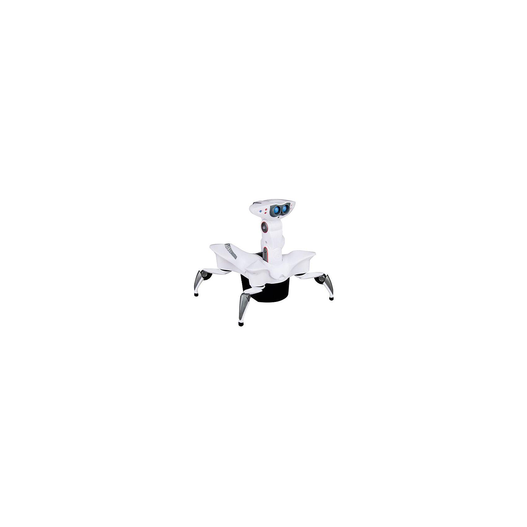Мини-робот краб, WowWeeМини-робот краб, - это мини-версия знаменитого робота от WowWee. Простой в управлении небольшой робот, будет понятен даже четырехлетним детям. Управлять роботом просто и легко набором кнопок на корпусе. Включите робота, и он зашагает вперед, с легкостью преодолевая препятствия.<br><br>Дополнительная информация:<br><br>- Материал: пластик, металл.<br>- Размеры:  17 х 18,3 х 21,8 см<br>- Элемент питания: 2 ААА батарейки (продаются отдельно)<br>-  При включении начинает движение вперед.<br>-  Подвижные ноги и голова.<br>-  Умеет обходить препятствия, исследовать помещение и реагировать на события.<br>-  ИК датчики.<br><br>Мини-робота Краба, WowWee, можно купить в нашем магазине.<br><br>Ширина мм: 216<br>Глубина мм: 152<br>Высота мм: 215<br>Вес г: 580<br>Возраст от месяцев: 72<br>Возраст до месяцев: 1164<br>Пол: Мужской<br>Возраст: Детский<br>SKU: 1636758