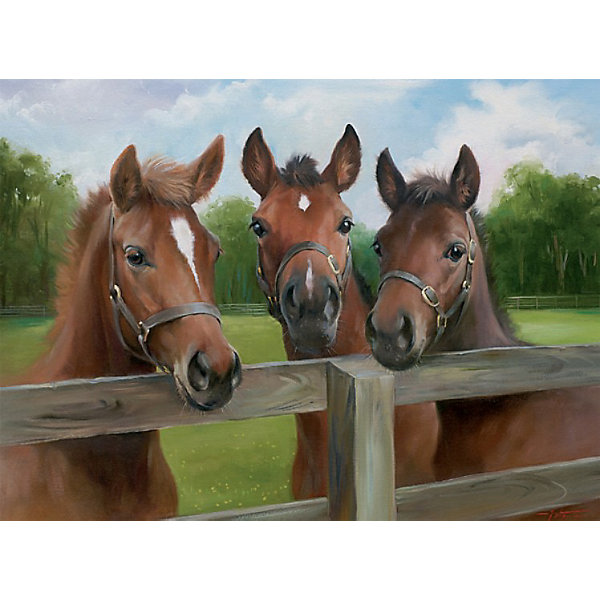 Пазл «Три лошади» 500 деталей, RavensburgerПазлы до 500 деталей<br>Собрав Пазл «Три лошади» 500 деталей, Ravensburger (Равенсбургер), Вы получите великолепную картину трех коричневых скаковых лошадей в загоне в высочайшем разрешении. Процесс собирания пазла Три лошади придется по душе Вам и Вашему ребенку, а живописная картина будет отлично смотреться на видном месте в Вашем доме!<br><br>Характеристики:<br>-Элементы идеально соединяются друг с другом, не отслаиваются с течением времени<br>-Высочайшее качество картона и полиграфии <br>-Матовая поверхность исключает отблески<br>-Развивает: память, мышление, внимательность, усидчивость, мелкая моторика, восприятие форм и цветов<br>-Занимательное времяпрепровождение для всей семьи<br>-Для сохранения в собранном виде можно использовать скотч или специальный клей для пазлов (в комплект не входит)<br><br>Дополнительная информация:<br>-Материал: плотный картон, бумага<br>-Размер собранного пазла: 49х36 см<br>-Размер упаковки: 34х23х4 см<br>-Вес упаковки: 550 г<br><br>Пазл «Три лошади» – великолепная игра для семейного досуга и оригинальный подарок друзьям! <br><br>Пазл «Три лошади» 500 деталей, Ravensburger (Равенсбургер) можно купить в нашем магазине.<br>Ширина мм: 234; Глубина мм: 337; Высота мм: 38; Вес г: 511; Возраст от месяцев: 144; Возраст до месяцев: 228; Пол: Женский; Возраст: Детский; Количество деталей: 500; SKU: 1698347;