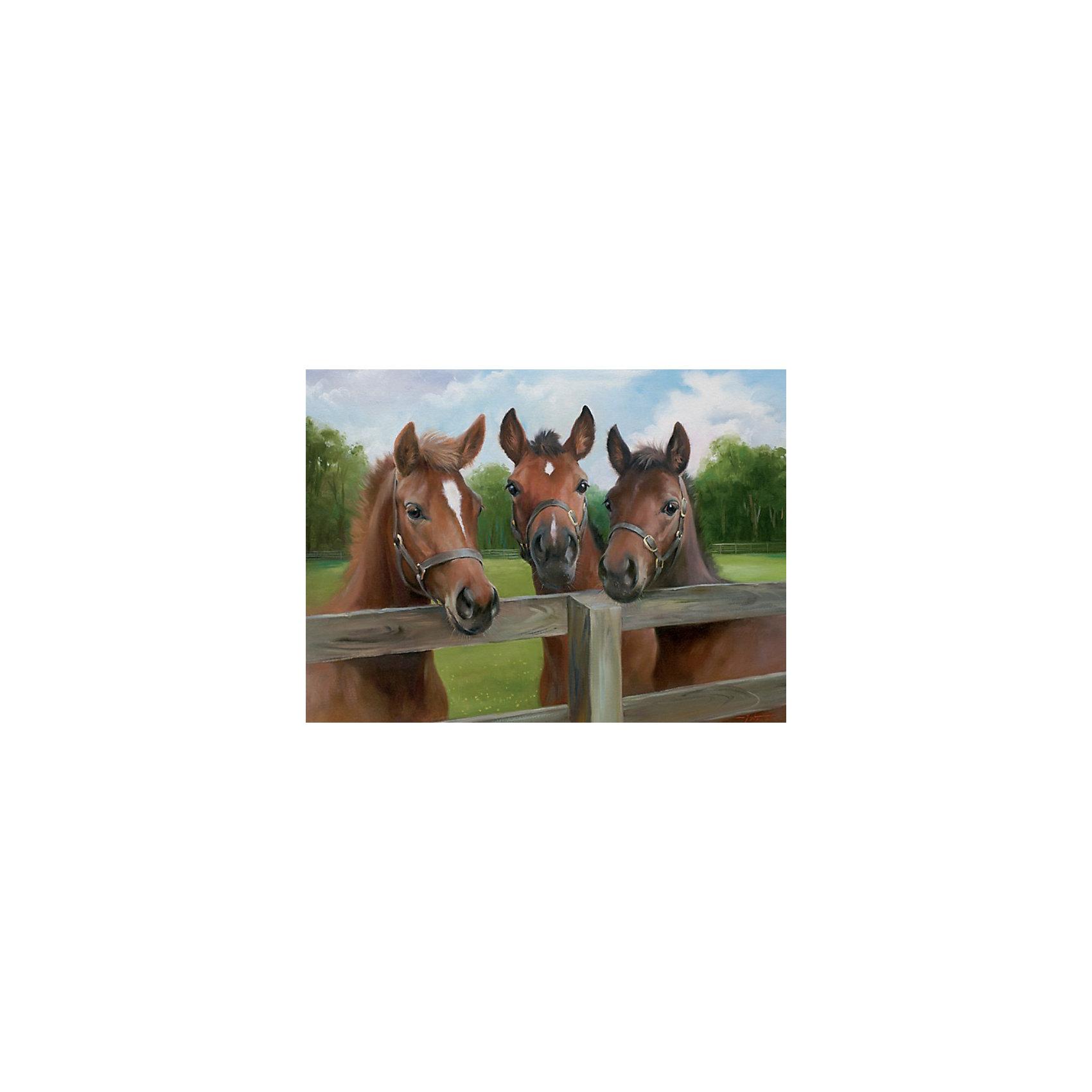 Пазл «Три лошади» 500 деталей, RavensburgerПазлы для детей постарше<br>Собрав Пазл «Три лошади» 500 деталей, Ravensburger (Равенсбургер), Вы получите великолепную картину трех коричневых скаковых лошадей в загоне в высочайшем разрешении. Процесс собирания пазла Три лошади придется по душе Вам и Вашему ребенку, а живописная картина будет отлично смотреться на видном месте в Вашем доме!<br><br>Характеристики:<br>-Элементы идеально соединяются друг с другом, не отслаиваются с течением времени<br>-Высочайшее качество картона и полиграфии <br>-Матовая поверхность исключает отблески<br>-Развивает: память, мышление, внимательность, усидчивость, мелкая моторика, восприятие форм и цветов<br>-Занимательное времяпрепровождение для всей семьи<br>-Для сохранения в собранном виде можно использовать скотч или специальный клей для пазлов (в комплект не входит)<br><br>Дополнительная информация:<br>-Материал: плотный картон, бумага<br>-Размер собранного пазла: 49х36 см<br>-Размер упаковки: 34х23х4 см<br>-Вес упаковки: 550 г<br><br>Пазл «Три лошади» – великолепная игра для семейного досуга и оригинальный подарок друзьям! <br><br>Пазл «Три лошади» 500 деталей, Ravensburger (Равенсбургер) можно купить в нашем магазине.<br><br>Ширина мм: 234<br>Глубина мм: 337<br>Высота мм: 38<br>Вес г: 511<br>Возраст от месяцев: 144<br>Возраст до месяцев: 228<br>Пол: Женский<br>Возраст: Детский<br>Количество деталей: 500<br>SKU: 1698347
