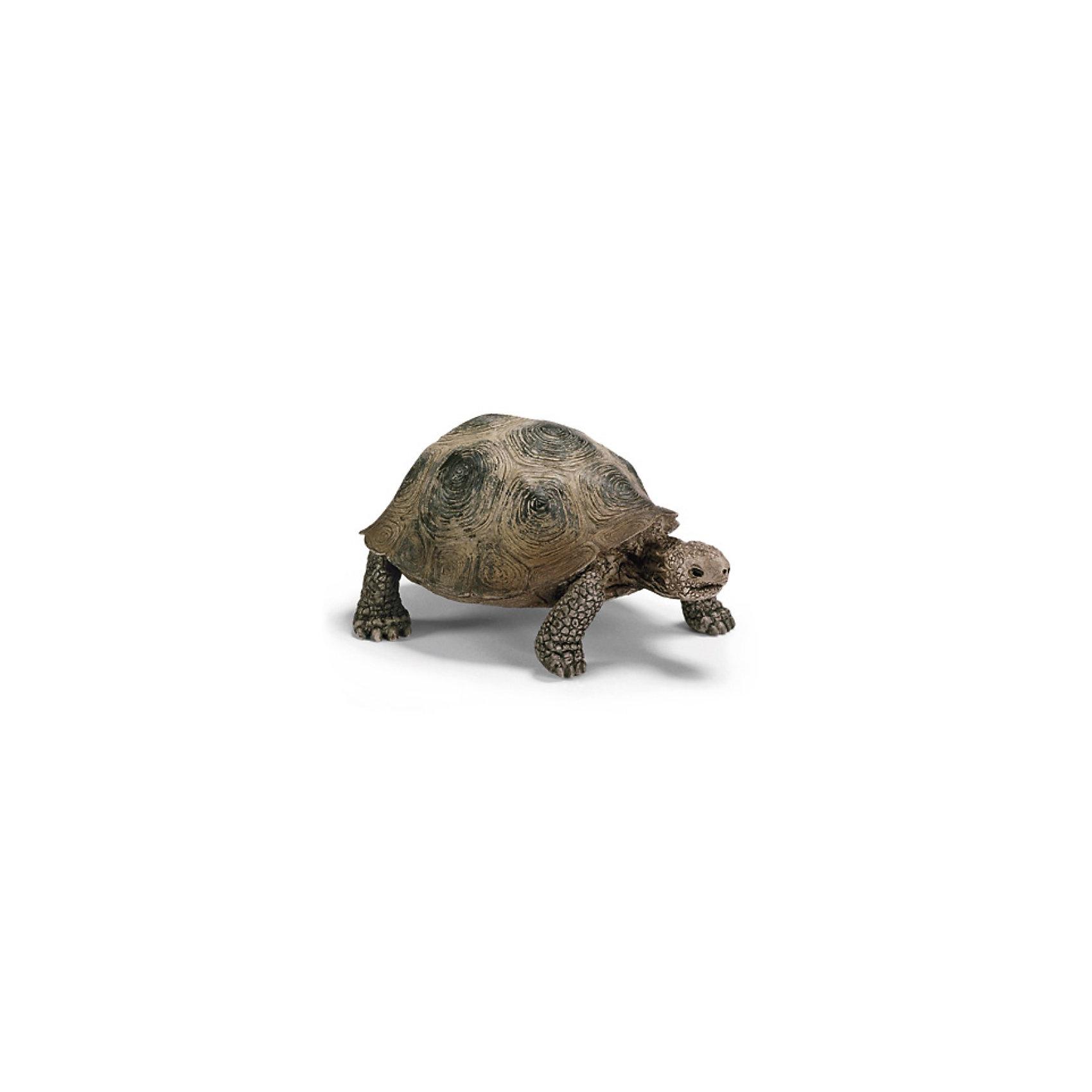 Schleich Гигантская черепаха. Серия Дикие животные