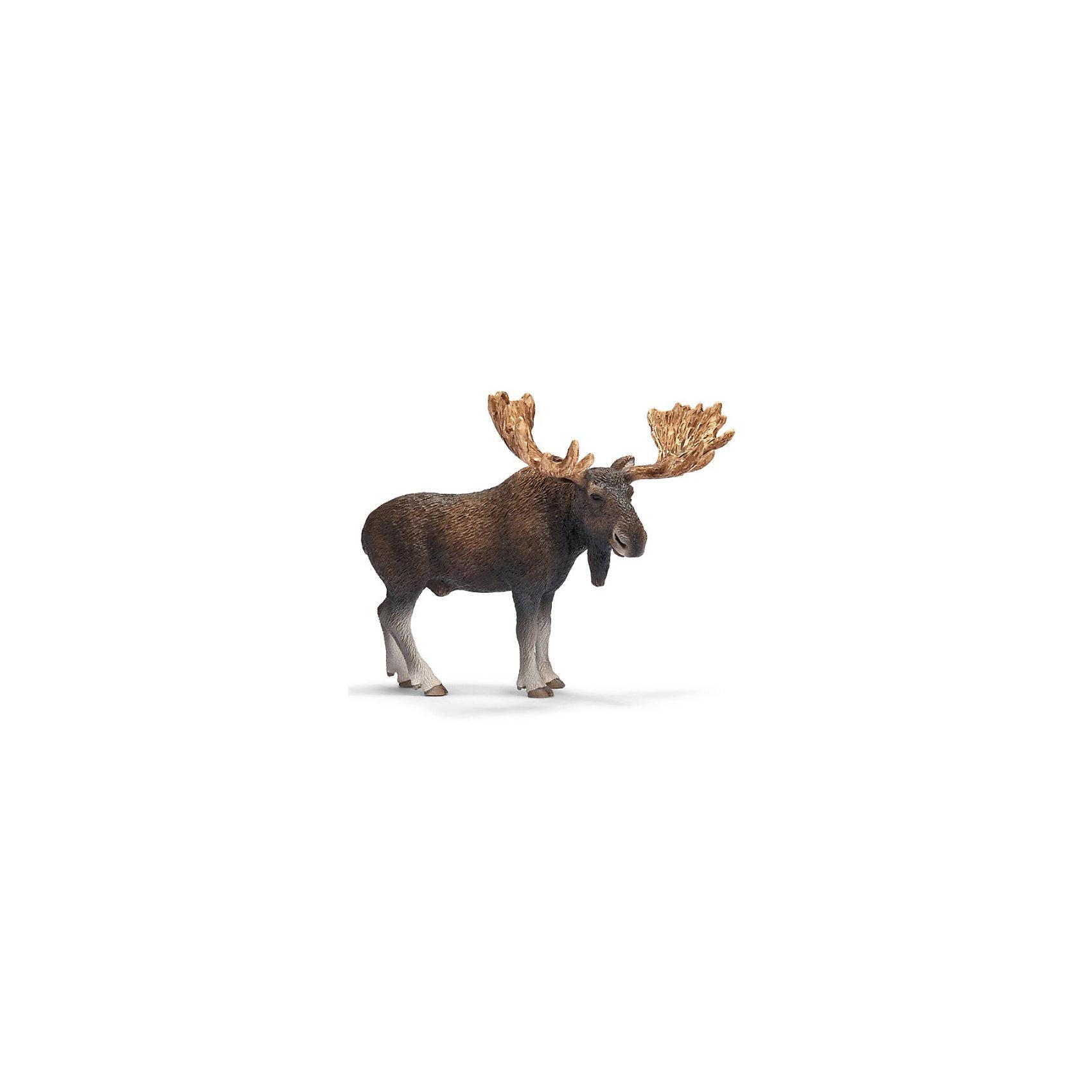 Schleich Schleich Лось, самец. Серия Дикие животные schleich schleich кенгуру серия дикие животные