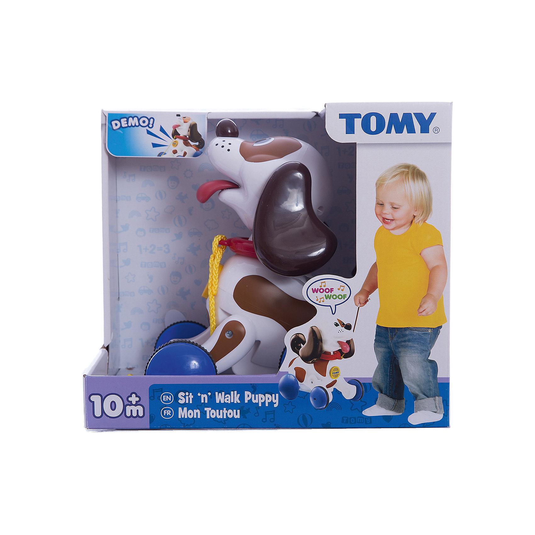 Развивающая игрушка-каталка Щенок, TOMYИгрушки-каталки<br>Великолепная развивающая игрушка-каталка Щенок от известного бренда TOMY (Томи) идеально подойдёт Вашему малышу для прогулок!<br><br>Если Ваш малыш потянет за верёвочку, щенок начнёт задорно лаять, следуя за малышом.<br><br>Игрушка-собачка ведёт себя почти как живая! Если ребёнок будет катать её очень долго, она начнет жалобно скулить.<br><br>Кроме удовольствия, данная игрушка способствует развитию важных навыков у Вашего ребёнка в возрасте от 10 месяцев. У вашего малыша появиться желание много ходить, что повысит его активность, а также будет развиваться координация и пространственное мышление. И всё это таким простым непосредтвенным путём! Порадуйте Вашего малыша этим волшебным питомцем!<br><br>Дополнительная информация:<br>Материал: высококачественная пластмасса<br>Питание: батарейки 2 х АА (есть в комплекте)<br>Размер игрушки: 20 х 15 х 23 см<br>Размер упаковки: 31 х 20 х 25 см<br>Вес: 400 гр (с упаковкой)<br><br>Этого удивительного интерактивного друга Щенка от Томи Вы можете купить в нашем интернет-магазине.<br><br>Ширина мм: 266<br>Глубина мм: 297<br>Высота мм: 198<br>Вес г: 946<br>Возраст от месяцев: 10<br>Возраст до месяцев: 36<br>Пол: Унисекс<br>Возраст: Детский<br>SKU: 2001239
