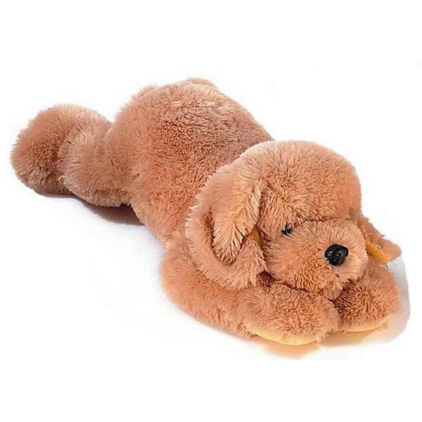 AURORA Мягкая игрушка Ретривер, 70 смМягкие игрушки животные<br>AURORA Мягкая игрушка Ретривер, 70 см - замечательный плюшевый пес, который так похож на настоящую, живую собаку! <br><br>Высокий уровень детализации, натуральные цвета, приятные на ощупь ткани и полное отсутсвие запахов - это отличительные черты всех без исключения игрушек Аврора. <br><br>Игрушка изготовлена из экологически чистых материалов: высококачественного плюшa и гипoaллepгeнного cинтепoна. <br><br>Дополнительная информация:<br>- Игрушка пригодна для машинной стирки, не теряет при этом внешний вид.<br>- Материалы:  плюш и гипoaллepгeнный cинтепoн.<br>Размеры – 0.7 х 0.36 х 0.28 м<br><br>Эта симпатичная игрушка непременно понравится вашему ребенку и станет отличным украшением детской комнаты!<br><br>Ширина мм: 250<br>Глубина мм: 600<br>Высота мм: 200<br>Вес г: 1265<br>Возраст от месяцев: 24<br>Возраст до месяцев: 120<br>Пол: Унисекс<br>Возраст: Детский<br>SKU: 2147591