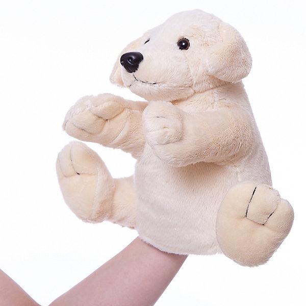 Gulliver Рукавичка-собакаМягкие игрушки на руку<br>Мягкая игрушка рукавичка-собака.<br><br>Собачка сделана в виде рукавички одевающейся на руку, что позволяет волшебным образом превратить неподвижную и неразговорчивую игрушку, в настоящего домашнего питомца, который к тому же может поговорить или рассказать сказку. Кроме того можно устроить настоящее домашнее кукольное представление с участием различных животных из этой серии. <br><br>Дополнительная информация:<br><br>Размер: 27 см. <br><br>Рукавичка-собачка обязательно порадует Вашего малыша!<br><br>Ширина мм: 100<br>Глубина мм: 150<br>Высота мм: 270<br>Вес г: 50<br>Возраст от месяцев: 36<br>Возраст до месяцев: 84<br>Пол: Унисекс<br>Возраст: Детский<br>SKU: 2148686