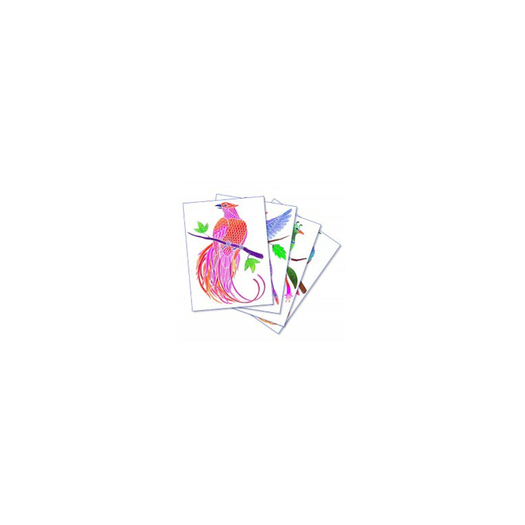 SentoSpherе 656 Акварельная раскраска Райские птицыВсего несколько капель красок и любой ребенок сможет создать настоящие произведения искусства. Акварель для детей основана на технике вставки в оправу тонкого пергамента. Эта техника позволяет картине приклеиться только на специальные поверхности: рисунок появляется по мере проведения кисточкой по бумаге. Картину можно перерисовывать несколько раз, чтобы получить самый красивый результат. Такая техника идеальна, чтобы научить детей составлению цветов. Кроме того, она развивает воображение, точность и внимание. 4 картины; 1 кисть очень высокого качества; 1 палитра для смешивания красок; 5 флаконов не токсичных акварельных красок; 1 пипетка для дозировки красок; 1 инструкция<br><br>Ширина мм: 195<br>Глубина мм: 30<br>Высота мм: 265<br>Вес г: 275<br>Возраст от месяцев: 36<br>Возраст до месяцев: 2147483647<br>Пол: Унисекс<br>Возраст: Детский<br>SKU: 2176757