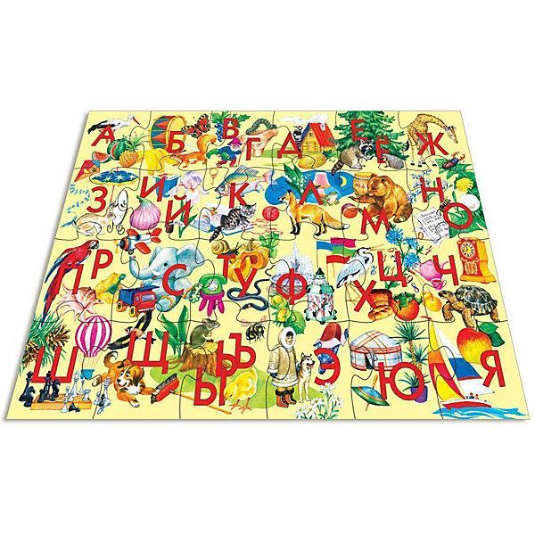 Мозаика для малышей Азбука, 24 макси-детали, Дрофа-МедиаМозаика<br>Мозаика для малышей с алфавитом от Дрофа-Медиа (Drofa-media). <br><br>Крупные и яркие детали мозаики привлекают внимание даже самых маленьких детей. Картинку удобно собирать, сидя на полу: большие фрагменты рассчитаны на малышей и не потеряются. Игра развивает зрительное восприятие, мышление и мелкую моторику рук, учит подбирать подходящие по форме части рисунка и складывать целое изображение, помогает изучить алфавит.<br>Всего в набор входит 24 пазловые детали, на каждой написаны 1-2 буквы и изображены предметы, начинающиеся на эти буквы.<br><br>Порадуйте Вашего малыша прекрасным подарком!<br><br>Дополнительная информация:<br><br>- В комплекте: 24 макси-детали<br>- Материал: плотный картон<br>- Размер собранного поля: 700 х 500 мм<br>- Размер упаковки: 265 х 50 х 275 мм<br>- Вес: 620 г.<br><br>Мозаику для малышей с алфавитом от Дрофа-Медиа (Drofa-media) можно купить в нашем интернет-магазине.<br>Ширина мм: 265; Глубина мм: 50; Высота мм: 275; Вес г: 620; Возраст от месяцев: 48; Возраст до месяцев: 84; Пол: Унисекс; Возраст: Детский; SKU: 2281429;
