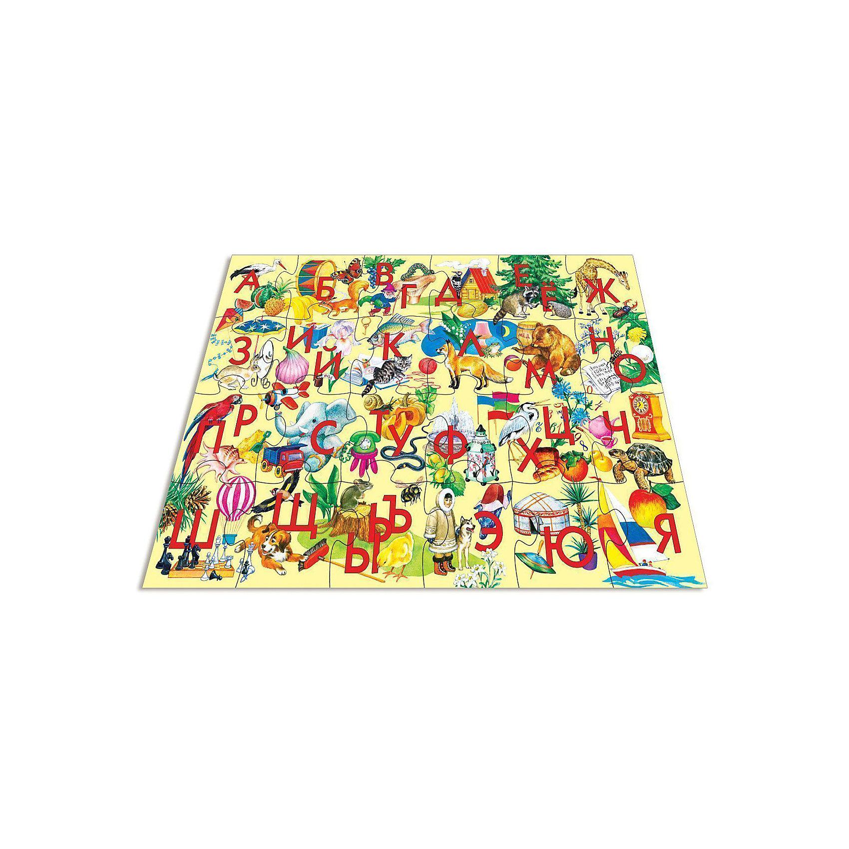 Мозаика для малышей Азбука, 24 макси-детали, Дрофа-МедиаМозаика<br>Мозаика для малышей с алфавитом от Дрофа-Медиа (Drofa-media). <br><br>Крупные и яркие детали мозаики привлекают внимание даже самых маленьких детей. Картинку удобно собирать, сидя на полу: большие фрагменты рассчитаны на малышей и не потеряются. Игра развивает зрительное восприятие, мышление и мелкую моторику рук, учит подбирать подходящие по форме части рисунка и складывать целое изображение, помогает изучить алфавит.<br>Всего в набор входит 24 пазловые детали, на каждой написаны 1-2 буквы и изображены предметы, начинающиеся на эти буквы.<br><br>Порадуйте Вашего малыша прекрасным подарком!<br><br>Дополнительная информация:<br><br>- В комплекте: 24 макси-детали<br>- Материал: плотный картон<br>- Размер собранного поля: 700 х 500 мм<br>- Размер упаковки: 265 х 50 х 275 мм<br>- Вес: 620 г.<br><br>Мозаику для малышей с алфавитом от Дрофа-Медиа (Drofa-media) можно купить в нашем интернет-магазине.<br><br>Ширина мм: 265<br>Глубина мм: 50<br>Высота мм: 275<br>Вес г: 620<br>Возраст от месяцев: 48<br>Возраст до месяцев: 84<br>Пол: Унисекс<br>Возраст: Детский<br>SKU: 2281429