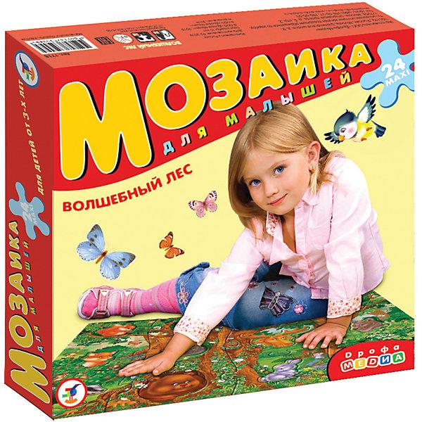 Мозаика для малышей Волшебный лес, Дрофа-МедиаПазлы для малышей<br>Мозаика для малышей Волшебный лес, Дрофа-Медиа (Drofa-media).<br><br>Крупные и яркие детали мозаики привлекают внимание даже самых маленьких детей. Картинку удобно собирать, сидя на полу: большие фрагменты рассчитаны на малышей и не потеряются. Игра развивает зрительное восприятие, мышление и мелкую моторику рук, учит подбирать подходящие по форме части рисунка и складывать целое изображение, знакомит с различными видами лесных животных.<br><br>На картинке изображены 12 животных: белочка, дятел, бурундук, сова, волк, медведь, лось, еж, лиса, заяц, бобер, енот. <br>Мозаика представляет собой набор из 12 крупных пазловых элементов, внутри каждого пазла вырублена фигурка.<br><br>Дополнительная информация:<br><br>- В комплекте: 12 элементов<br>- Материал: плотный картон<br>- Размер упаковки: 265 х 50 х 275 мм<br>- Вес: 620 г.<br><br>Мозаику для малышей Волшебный лес, Дрофа-Медиа (Drofa-media) можно купить в нашем интернет-магазине.<br><br>Ширина мм: 265<br>Глубина мм: 50<br>Высота мм: 275<br>Вес г: 620<br>Возраст от месяцев: 36<br>Возраст до месяцев: 60<br>Пол: Унисекс<br>Возраст: Детский<br>SKU: 2281433
