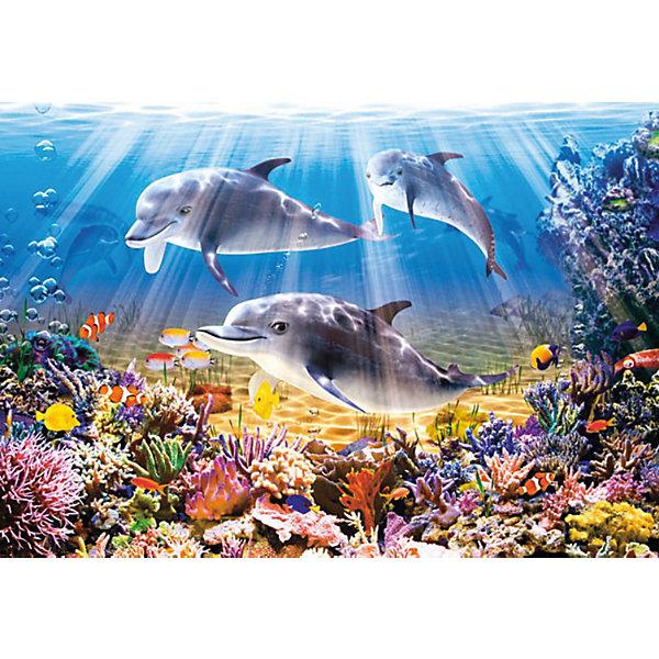 Пазл Дельфины, 500 деталей, CastorlandПазлы классические<br>Пазл Дельфины, 500 деталей, Castorland (Касторленд).<br><br>Дополнительная информация:<br><br>- Изображение: Дельфины<br>- Количество деталей: 500<br>- Материал: плотный картон<br>- Размер собранного пазла:   470x330 мм<br>- Размер коробки:  320x220x47 мм<br>- Вес: 400 г.<br><br>Пазл Дельфины, 500 деталей, Castorland (Касторленд) можно купить в нашем интернет-магазине.<br>Ширина мм: 320; Глубина мм: 220; Высота мм: 47; Вес г: 400; Возраст от месяцев: 72; Возраст до месяцев: 144; Пол: Унисекс; Возраст: Детский; Количество деталей: 500; SKU: 2328132;