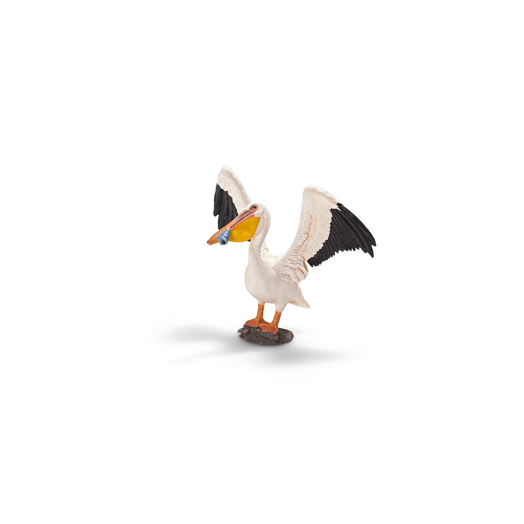 Пеликан, SchleichФигурка пеликана компании Schleich (Шляйх) порадует всех маленьких любителей животных и станет достойным дополнением коллекции птиц от немецкой компании Шляйх.<br><br>Пеликан - крупная птица с необычным длинным клювом с кожаным мешком для сбора рыбы. Пеликан сидит на камушке с расправленными крыльями. Красивая белоснежная птица с черной окантовкой крыльев держит в своем ярко-желтом клюве маленькую рыбку.<br><br>Фигурки  Schleich (Шляйх)  (Шляйх) раскрашиваются вручную с особой внимательностью к каждой детали. Изготовление игрушек находится под контролем Берлинского зоопарка, поэтому игрушки так похожи на настоящих животных.<br><br>Игрушки Schleich  (Шляйх) являются отличным обучающим материалом и знакомят детей с представителями животного мира. Все фигурки прекрасно сочетаются с другими игрушками и смогут разнообразить сюжетно-ролевые игры детей<br><br>Дополнительная информация:<br><br>Материал: каучуковый пластик<br>Размеры: 15х 11 х 3,6 см<br><br>Пеликана, Schleich (Шляйх) можно купить в нашем магазине.<br><br>Ширина мм: 110<br>Глубина мм: 86<br>Высота мм: 58<br>Вес г: 34<br>Возраст от месяцев: 36<br>Возраст до месяцев: 96<br>Пол: Унисекс<br>Возраст: Детский<br>SKU: 2381525