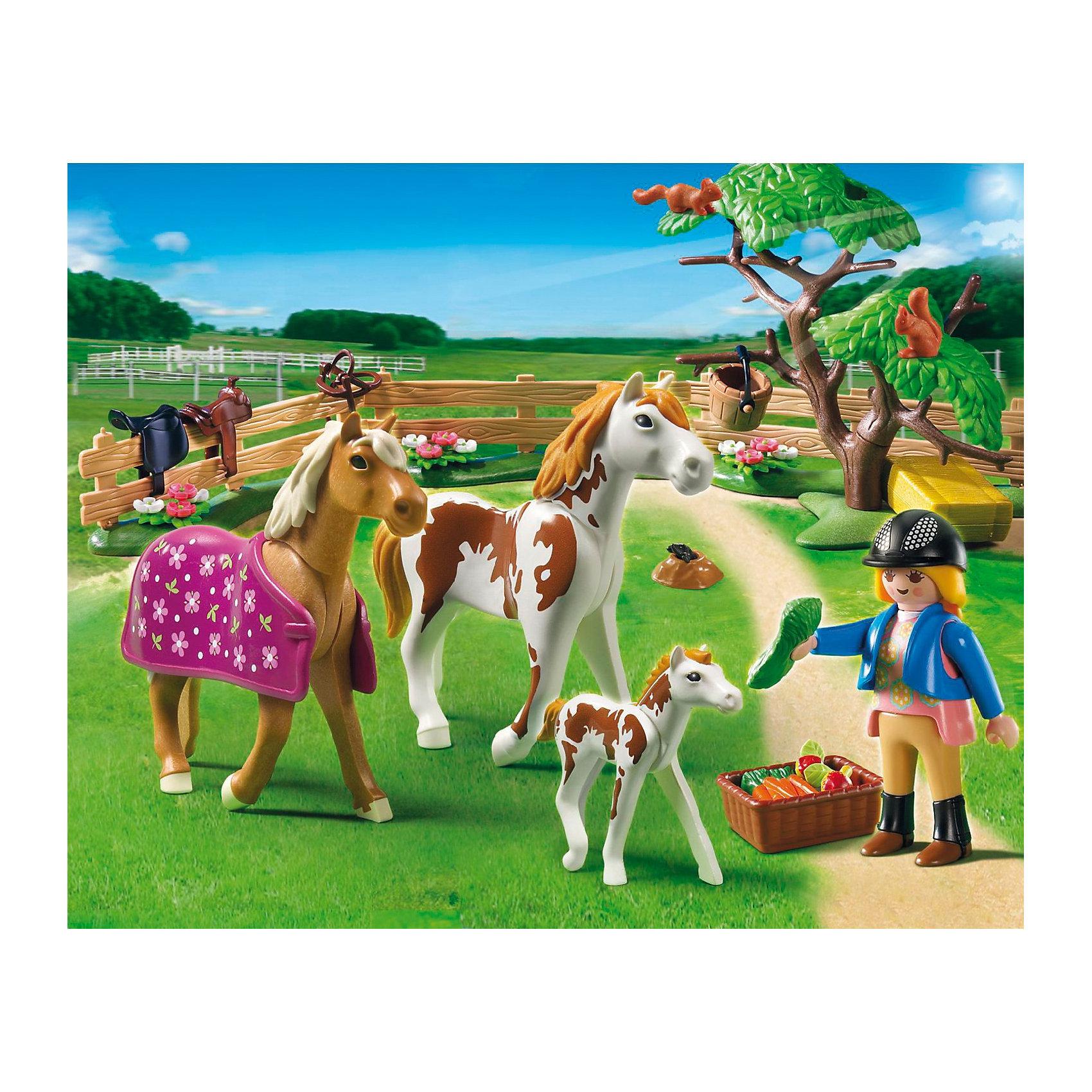 Лошади: Загон для лошадей, PLAYMOBILPLAYMOBIL 5227: Для прогулки всей лошадиной семьи лошадок и их маленького жеребенка фермеры построили загон. Теперь можно без опаски оставить малыша одного. Наездница приносит лошадкам овощи и фрукты. Также в наборе Плеймобил 5227 есть все необходимое для ухода за животными, и раскидистое дерево для создания пейзажа. В наборе три фигурки лошадок, фермер, элементы забора, корзинка с овощами, дерево и другие детали. Всего в наборе 50 деталей.  Фигурка человека может  нагибаться, двигать руки и голову. <br>В комплект входит: две лошадки, одна пони, одна фигурка человека, дерево, две белочки, норка с кротом, сено, овощи и фрукты для еды лошадкам.<br><br>Состав:<br><br>Люди:<br>Женщина<br><br>Зверушки:<br>Лошадь пегая, жеребенок пегий, конь, 2 белки.<br><br>Аксессуары:<br><br>Дерево, попона, 3 элемента забора, кадушка, корзина, брикет с сеном, морковь, пучок травы, яблоки.<br> <br>Дополнительная информация:<br><br>- комплект состоит из 50 деталей.<br>- материал: высококачественная пластмасса. <br>- размер фигурки человека:  7,5 см. (высота)<br>- размеры коробки: 25х20х7,5 см.<br>- вес 0,324 кг.<br><br>Загон для лошадей от PLAYMOBIL можно купить в нашем интернет-магазине.<br><br>Ширина мм: 257<br>Глубина мм: 202<br>Высота мм: 82<br>Вес г: 316<br>Возраст от месяцев: 60<br>Возраст до месяцев: 120<br>Пол: Женский<br>Возраст: Детский<br>SKU: 2382701