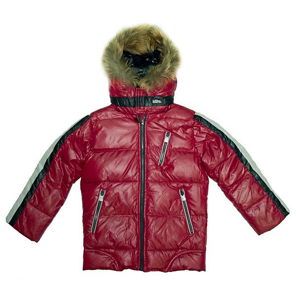 SNOWIMAGE Куртка для мальчикаВерхняя одежда<br>Потрясающая куртка для мальчика. Предназначена для использования в холодное время года при температуре воздуха от 0 до -35 градусов. Обладает следующими особенностями:<br>- комбинированный цвет: красный, черный, светло-серый;<br>- гладкий, шелковистый, очень приятный на ощупь полиэстер;<br>- утеплитель: 70% пух белой утки, 30% перо – естественный теплоизолятор в любых погодных условиях, легкий, свободно дышащий, долговечный;<br>- аппликация с лого на вороте слева;<br>- застежка-молния с внутренней ветрозащитной планкой;<br>- рукава с внутренними теплыми трикотажными манжетами красного цвета, препятствующими попаданию внутрь снега и воды;<br>-  теплый капюшон с отстегиваемым мехом, впереди застегивается на велкро;<br>- 2 боковых и 1 нагрудный карман на молнии, 1 внутренний карман на велкро;<br>- подкладка выполнена из мягкого и теплого флиса серого цвета, предусмотрено место для подписи вещи на случай утери;<br>- низ регулируется кулиской;<br>- петля для вешалки.<br><br>Ширина мм: 356<br>Глубина мм: 10<br>Высота мм: 245<br>Вес г: 519<br>Цвет: красный<br>Возраст от месяцев: 60<br>Возраст до месяцев: 108<br>Пол: Мужской<br>Возраст: Детский<br>Размер: 110,116,128,134,122<br>SKU: 2390738
