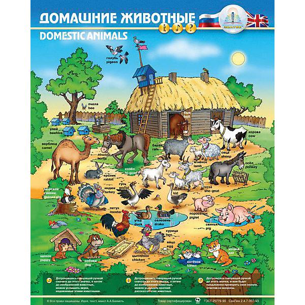 Электронный звуковой плакат Домашние животныеЭлектронные плакаты<br>Электронный звуковой плакат Домашние животные, Знаток<br><br>Характеристики:<br><br>• поможет выучить животных и звуки, которые они издают<br>• 3 режима игры<br>• влагозащитная поверхность<br>• регулируемая громкость<br>• материал: пластик, ПВХ<br>• размер плаката: 47х58,5 см<br>• размер упаковки: 49,5х23х4 см<br>• батарейки: ААА - 3 шт. (входят в комплект)<br><br>Электронный плакат Знаток познакомит вашего малыша с животными и звуками, которые они издают. Игра проходит в трех режимах: обучение, звуки и экзамен. Нажмите на кнопку - плакат расскажет крохе о животных и звуках. Вторая кнопка изобразит звуки. А кнопка Экзамен поможет ребенку закрепить полученные знания. Во время экзамена у малыша будет 2 попытки для правильного ответа. Поверхность плаката защищает от влаги. Кнопки плаката сенсорные, а громкость можно регулировать. С этим плакатом ваш малыш проведет время весело и с пользой!<br><br>Электронный звуковой плакат Домашние животные, Знаток можно купить в нашем интернет-магазине.<br><br>Ширина мм: 230<br>Глубина мм: 40<br>Высота мм: 485<br>Вес г: 500<br>Возраст от месяцев: 36<br>Возраст до месяцев: 84<br>Пол: Унисекс<br>Возраст: Детский<br>SKU: 2403146