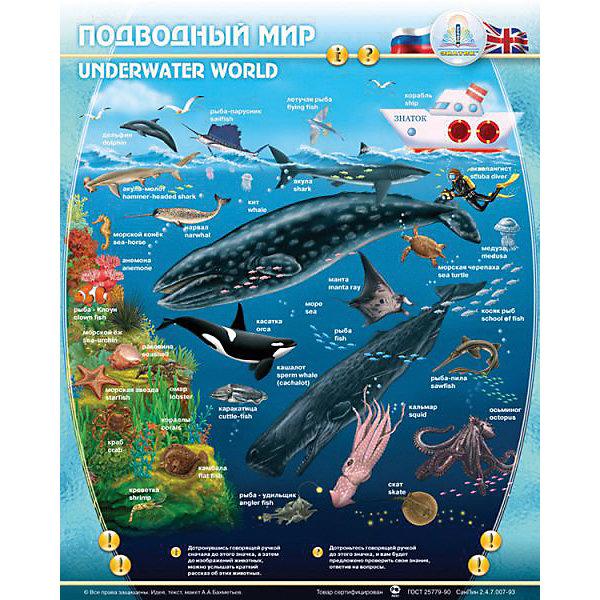 Электронный звуковой плакат Подводный МирЭлектронные плакаты<br>Электронный звуковой плакат Подводный Мир, Знаток<br><br>Характеристики:<br><br>• расскажет малышу о жителях подводного мира<br>• 2 режима игры: пояснение и экзамен<br>• сенсорные кнопки<br>• регулируемая громкость<br>• материал: пластик, ПВХ<br>• размер плаката: 47х58,5 см<br>• размер упаковки: 50х24х4 см<br>• вес: 415 грамм<br>• батарейки: ААА - 3 шт. (входят в комплект)<br><br>Звуковой плакат Знаток - настоящий помощник в изучении подводного мира. Он расскажет о жителях подводного мира и звуках, которые они издают. После обучения малыш сможет проверить свои знания с помощью кнопки Экзамен. Плакат оснащен сенсорными кнопками, влагозащитной поверхностью и регулируемой громкостью. С этим плакатом ваш малыш с радостью получит новые знания!<br><br>Электронный звуковой плакат Подводный Мир, Знаток вы можете купить в нашем интернет-магазине.<br><br>Ширина мм: 230<br>Глубина мм: 40<br>Высота мм: 485<br>Вес г: 500<br>Возраст от месяцев: 36<br>Возраст до месяцев: 84<br>Пол: Унисекс<br>Возраст: Детский<br>SKU: 2403205