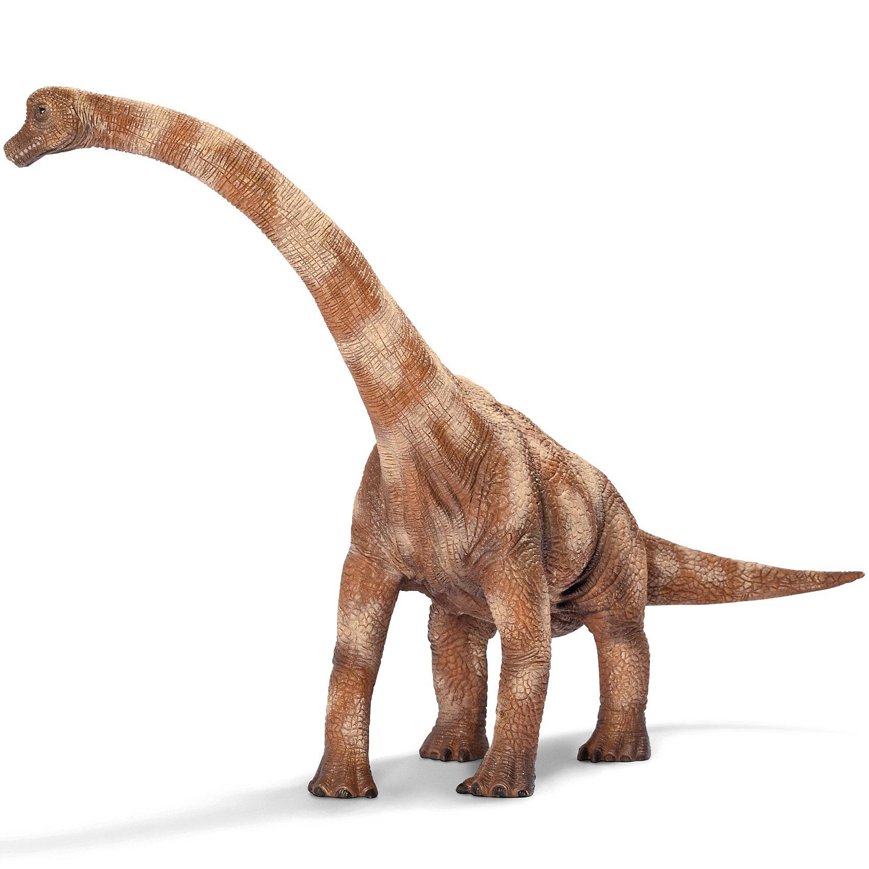 Брахиозавр, SchleichДраконы и динозавры<br>Брахиозавр очень похож на жирафа, но, в отличии от него, имеет длинный хвост. Небольшая голова, шея, длиной 8 метров, длинный хвост, сравнительно короткие конечности — так выглядел типичный Брахиозавр. Самые крупные особи Брахиозавра жили на территории Америки. Фигурка Брахиозавра очень красивая. Высоко поднятая шея голова Брахиозавра говорит о том, что они чаще всего питались листвой деревьев.<br><br>Дополнительная информация:<br><br>Материал: каучуковый пластик<br>Размер: 27,5 ? 18,0 ? 21,0 см<br><br>Брахиозавра, Schleich (Шляйх) можно купить в нашем магазине.<br><br>Ширина мм: 292<br>Глубина мм: 107<br>Высота мм: 179<br>Вес г: 475<br>Возраст от месяцев: 36<br>Возраст до месяцев: 96<br>Пол: Мужской<br>Возраст: Детский<br>SKU: 2445898