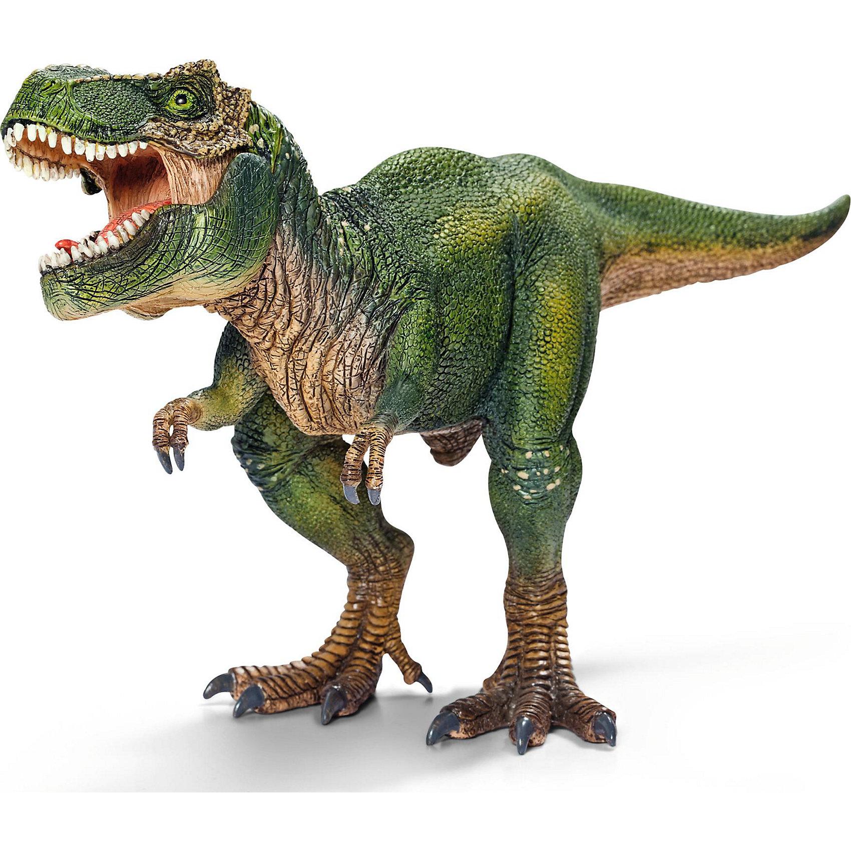 Тиранозавр Рекс, SchleichДраконы и динозавры<br>Тираннозавр Рекс — самый крупный из всех известных динозавров. <br><br>Благодаря высокой детализации игрушка дает точную информацию о внешнем виде животного. А подвижная нижняя челюсть у этой фигурки динозавра предоставляет еще больше игровых возможностей.<br><br>Тираннозавр Рекс — самый известный ящер-титан. Именно его чаще всего делают героем фильмов про динозавров. И хотя его скорость бега равна человеческой, но от столь искусного хищника не могли защититься даже другие динозавры. Тираннозавр Рекс без труда передвигался на задних лапах, имел самый сильный укус и питался плотью существ, живших в последней четверти мелового периода. А свой огромный и тяжелый хвост он использовал и как средство защиты, и как балансир при перемещении.<br><br>Дополнительная информация:<br><br>- Крупный размер: 28,0 ? 9,5 ? 14,0 см<br>- Высокая степень детализации<br>- Игрушка имеет подвижную нижнюю челюсть!<br>- Материал: каучуковый пластик<br><br>Тираннозавра Рекс, Schleich (Шляйх) можно купить в нашем магазине.<br><br>Ширина мм: 277<br>Глубина мм: 141<br>Высота мм: 69<br>Вес г: 288<br>Возраст от месяцев: 36<br>Возраст до месяцев: 96<br>Пол: Мужской<br>Возраст: Детский<br>SKU: 2445907