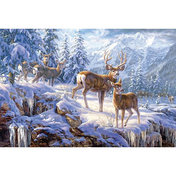 Пазл Олени в зимних горах, 1000 деталей, CastorlandПазлы классические<br>Пазл Олени в зимних горах от Castorland (Касторленд), 1000 деталей. <br><br>Благородные олени - это могучие животные, обитающие в лесах Европы. Благодаря своей красоте и стати они украшали герба многих городов. Теперь у Вас есть возможность собрать зимний пазл с изображением оленей и украсить им детскую комнату. Такой пазл с удовольствием будут собирать не только дети, но и взрослые.<br><br>Дополнительная информация:<br><br>- Количество деталей: 1000<br>- Материал: плотный картон<br>- Размер собранного пазла: 680x470 мм <br>- Размер коробки: 350x250x52 мм<br>- Вес: 600 г.<br><br>Пазл Олени в зимних горах, 1000 деталей, Castorland (Касторленд) можно купить в нашем интернет-магазине.<br><br>Ширина мм: 350<br>Глубина мм: 52<br>Высота мм: 250<br>Вес г: 500<br>Возраст от месяцев: 72<br>Возраст до месяцев: 1188<br>Пол: Унисекс<br>Возраст: Детский<br>Количество деталей: 1000<br>SKU: 2508081