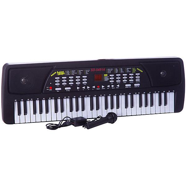 DoReMi Синтезатор с микрофоном, 54 клавишиСинтезаторы<br>Настоящий, почти взрослый синтезатор позволит ребенку почувствовать себя настоящим музыкантом. У него 54 клавиши, микрофон, 6 предзаписанных мелодий, 16 тональностей, 16 ритмов, встроенные функции программирования ритма, записи и воспроизведения. <br><br>Дополнительная информация:<br><br>Размеры: 68,5x8,7x23,6<br>Работает как от сети (DC6V - в комплекте), так и от батареек (4хАА - в комплекте нет)<br>Регулировка громкости и темпа<br><br>DoReMi Синтезатор с микрофоном, 54 клавиши можно купить в нашем магазине.<br><br>Ширина мм: 685<br>Глубина мм: 87<br>Высота мм: 236<br>Вес г: 1830<br>Возраст от месяцев: 60<br>Возраст до месяцев: 1188<br>Пол: Унисекс<br>Возраст: Детский<br>SKU: 2557197