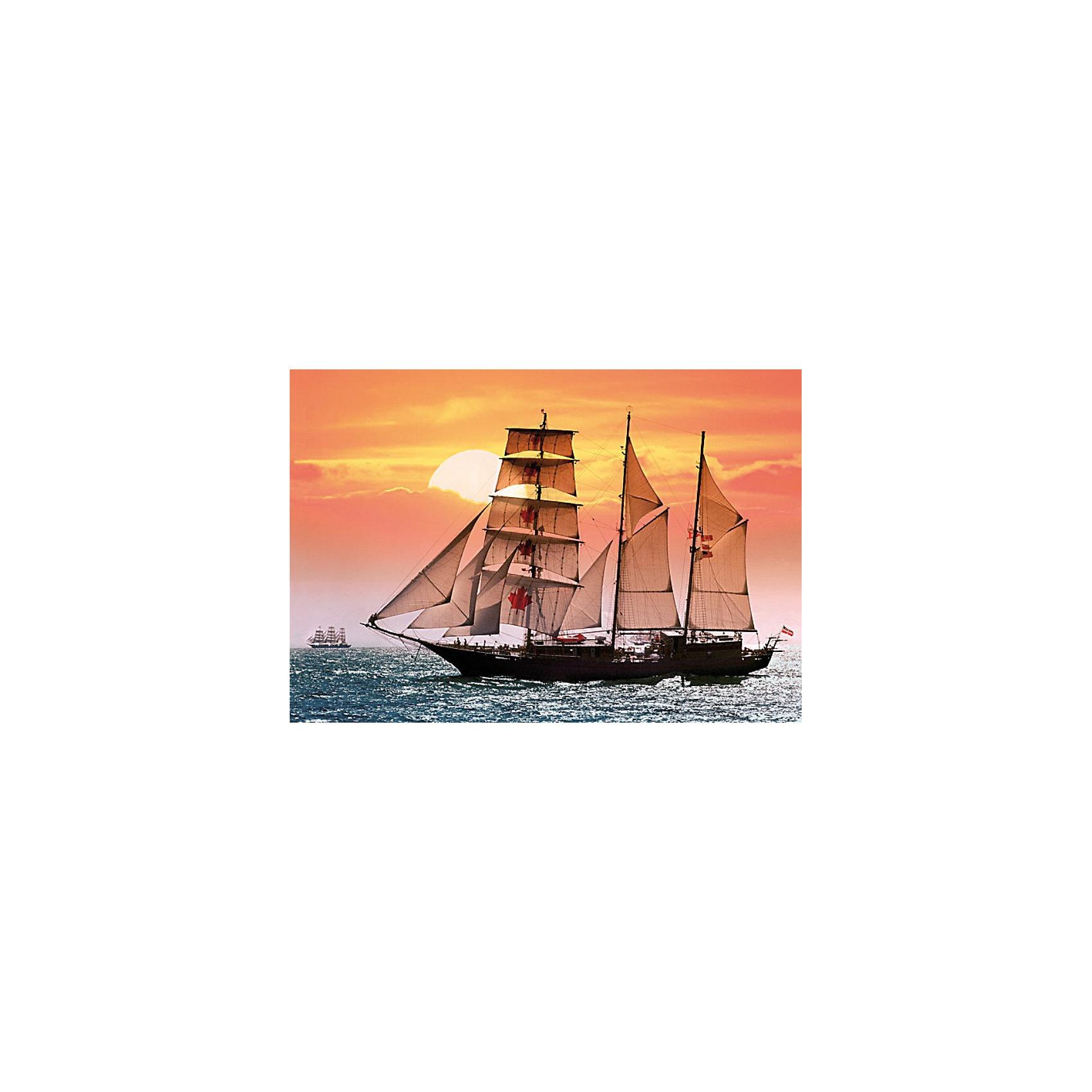 Castorland Пазлы Парусник, 1000 деталей, Castorland пазлы magic pazle объемный 3d пазл эйфелева башня 78x38x35 см