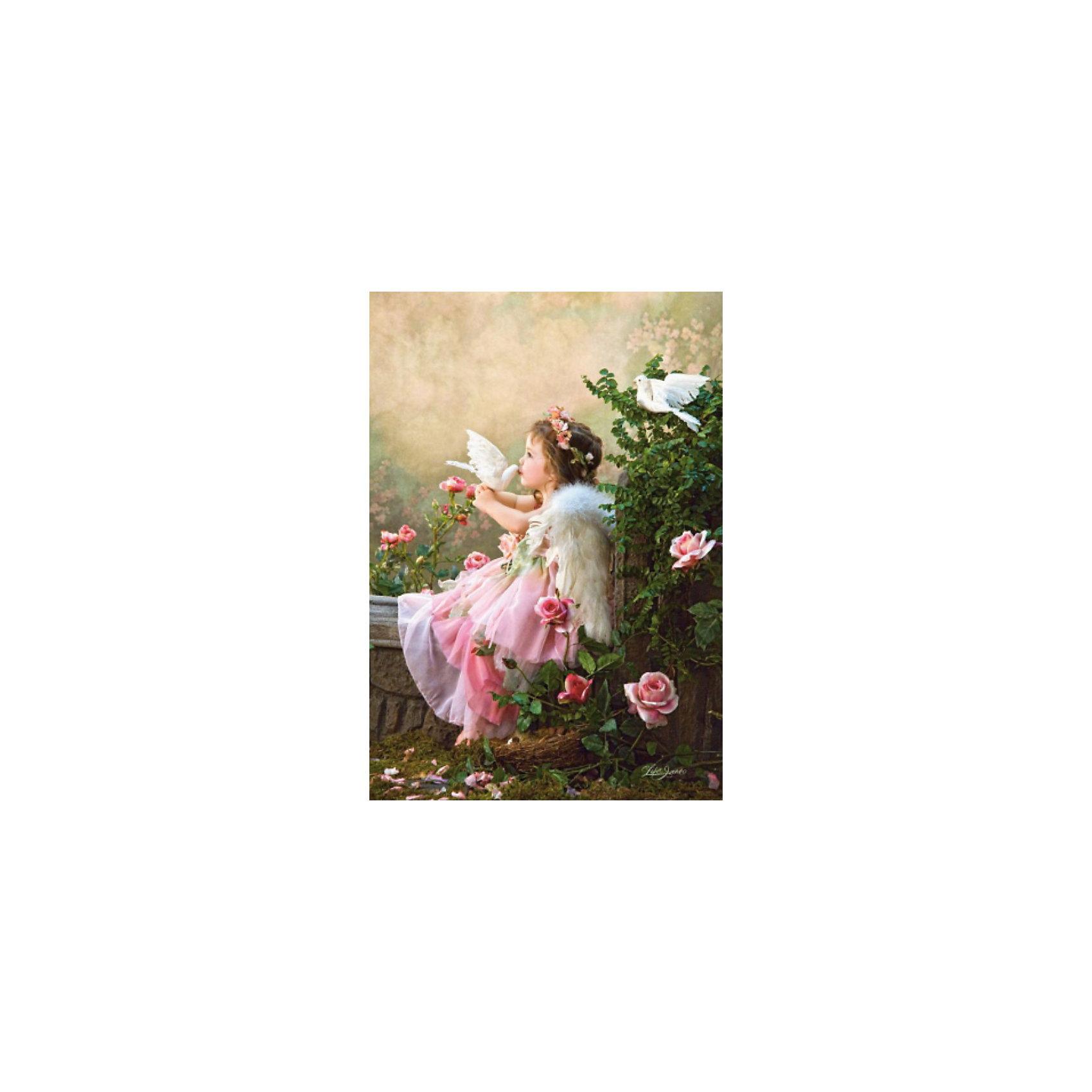 Castorland Пазлы Поцелуй ангела, 1000 деталей, Castorland паззл castorland 1000 эл 68 47см озеро канада