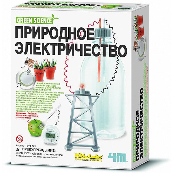 4M 00-03261 Природное электричествоРобототехника и электроника<br>Узнай, какие научные явления скрывает энергия! В ПРИРОДНОМ ЭЛЕКТРИЧЕСТВЕ  используются природные материалы, такие как грязь, лимоны и вода. Они приводят в действие лампочку, часы и звуковой чип. Удивительный, безвредный для окружающей среды, научный набор включает детальные инструкции, которые позволят создать много необычных батарей из фруктовых соков, овощей, монет, столовых приборов и других предметов! Внимание: Высокий заряд вдохновения и удовольствия!<br>Ширина мм: 170; Глубина мм: 210; Высота мм: 55; Вес г: 200; Возраст от месяцев: 96; Возраст до месяцев: 192; Пол: Унисекс; Возраст: Детский; SKU: 2568327;