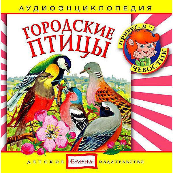 Аудиоэнциклопедия Городские птицы, CDАудиокниги, DVD и CD<br>Характеристики:<br><br>• издательство: Елена;<br>• размер: 14,0х13,0х1,0 см.;<br>• тип аудиодиска; CD<br>• материал: пластик;<br>• вес: 79 г.;<br>• для детей в возрасте: от 5 лет;<br>• страна производитель: Россия.<br><br>Аудиодиск городские птицы от издательства «Елена» серии «Чевостик» познакомит маленьких слушателей с пернатыми друзьями обитающими рядом с нами, а также о том, чем они питаются. В коллекцию энциклопедии вошли семнадцать интересных треков рассказывающих о каждой птице отдельно.<br><br>Аудиэнциклопедия - это наиболее лёгкий и доступный способ восприятия информации для детей. В игровой форме с любимыми героями малыш узнает много нового. Материал изложен в форме беседы с включением песенок, что надолго удерживает внимание ребёнка. Сборник начинается с вступительной песенки и заканчивает заключительной.<br><br>Слушая музыкальные рассказы, озвученные профессиональными актерами, дети развивают грамотную речь, внимание, усидчивость.<br><br>Аудиэнциклопедия «городские птицы», можно купить в нашем интернет-магазине.<br><br>Ширина мм: 142<br>Глубина мм: 10<br>Высота мм: 125<br>Вес г: 79<br>Возраст от месяцев: 60<br>Возраст до месяцев: 144<br>Пол: Унисекс<br>Возраст: Детский<br>SKU: 2580834