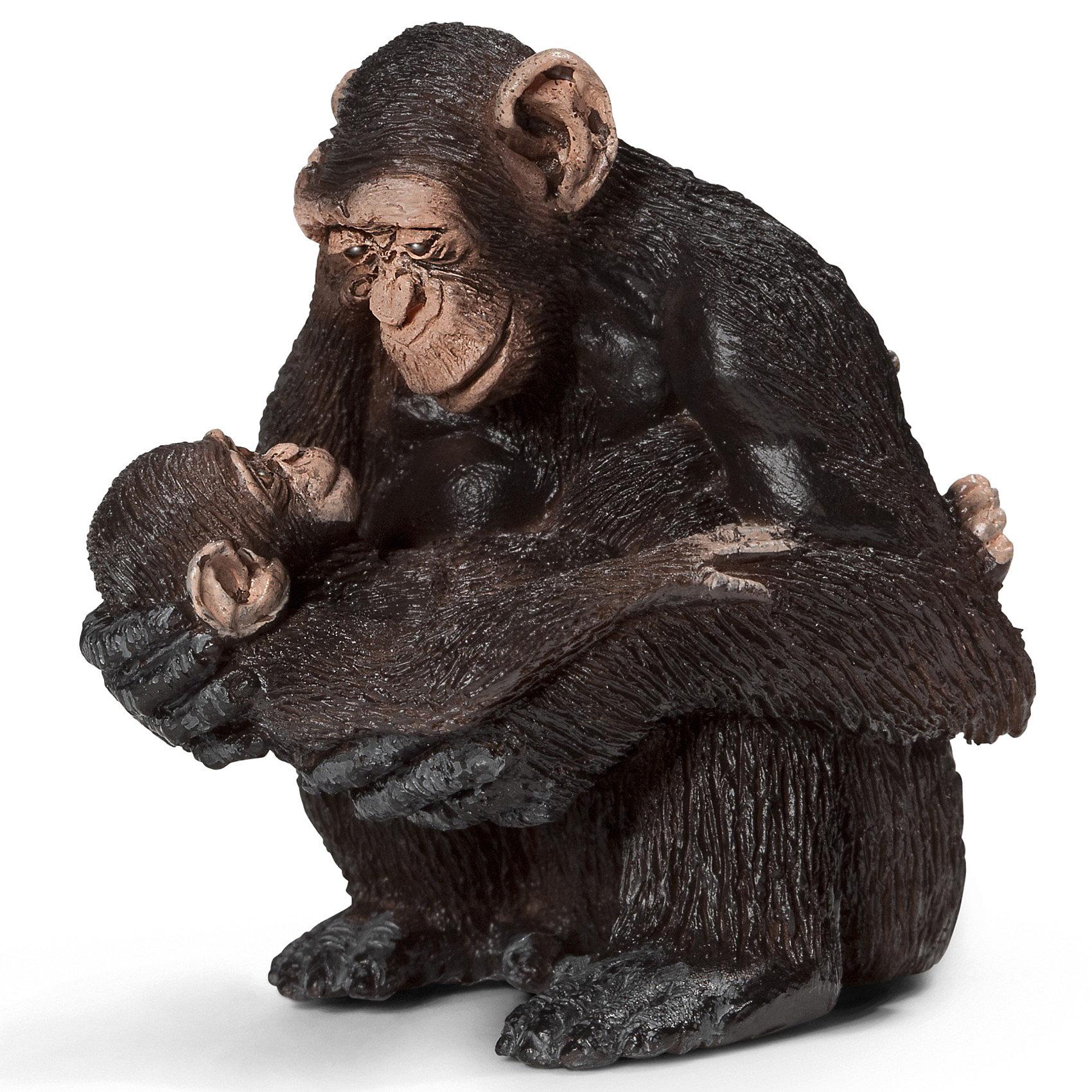 Schleich Шимпанзе, самка с детенышем. Серия Дикие животныеМир животных<br>Шимпанзе с детенышем из серии Дикие животные от компании Schleich (Шляйх) для вашей коллекции животных зоопарка.<br><br>Дополнительная информация:<br><br>-ручная роспись<br>-материал-пластик<br>-реалистичность исполнения<br>-размеры (ДхШхВ): 5х5,5х4,5 см<br><br>Schleich (Шляйх) Шимпанзе, самку с детенышем можно купить в нашем магазине<br><br>Ширина мм: 78<br>Глубина мм: 50<br>Высота мм: 40<br>Вес г: 43<br>Возраст от месяцев: 36<br>Возраст до месяцев: 96<br>Пол: Унисекс<br>Возраст: Детский<br>SKU: 2609255