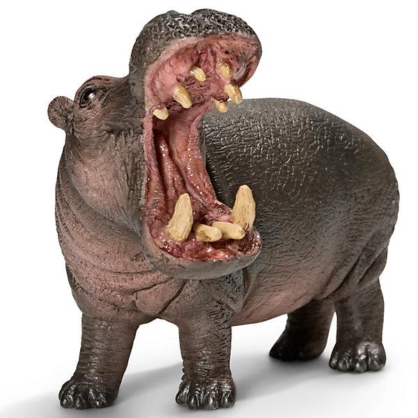 Schleich Гиппопотам. Серия Дикие животныеМир животных<br>Schleich (Шляйх) Гиппопотам. Серия Дикие животные (бегемот)-млекопитающее из отряда парнокопытных. Единственный в своем роде вид. Практически все время он проводит в пресных водоемах. И только в темное время суток на несколько часов выходит на сушу для кормежки. Вес взрослого бегемота может составлять 4 тонны, что делает его 2-м самым большим наземным животным после африканского слона.<br><br>Дополнительная информация:<br><br>-размеры (ДхШхВ): 6х7х10,5 см<br>-фигурка изготовлена из безопасного пластика и раскрашена вручную<br><br>Соберите всю коллекцию животных из  серии Дикие животные и играйте вместе с ребенком!<br><br>Игрушку Schleich (Шляйх) Гиппопотам. Серия Дикие животные  можно купить  в нашем магазине.<br>Ширина мм: 115; Глубина мм: 71; Высота мм: 48; Вес г: 121; Возраст от месяцев: 36; Возраст до месяцев: 96; Пол: Унисекс; Возраст: Детский; SKU: 2609257;