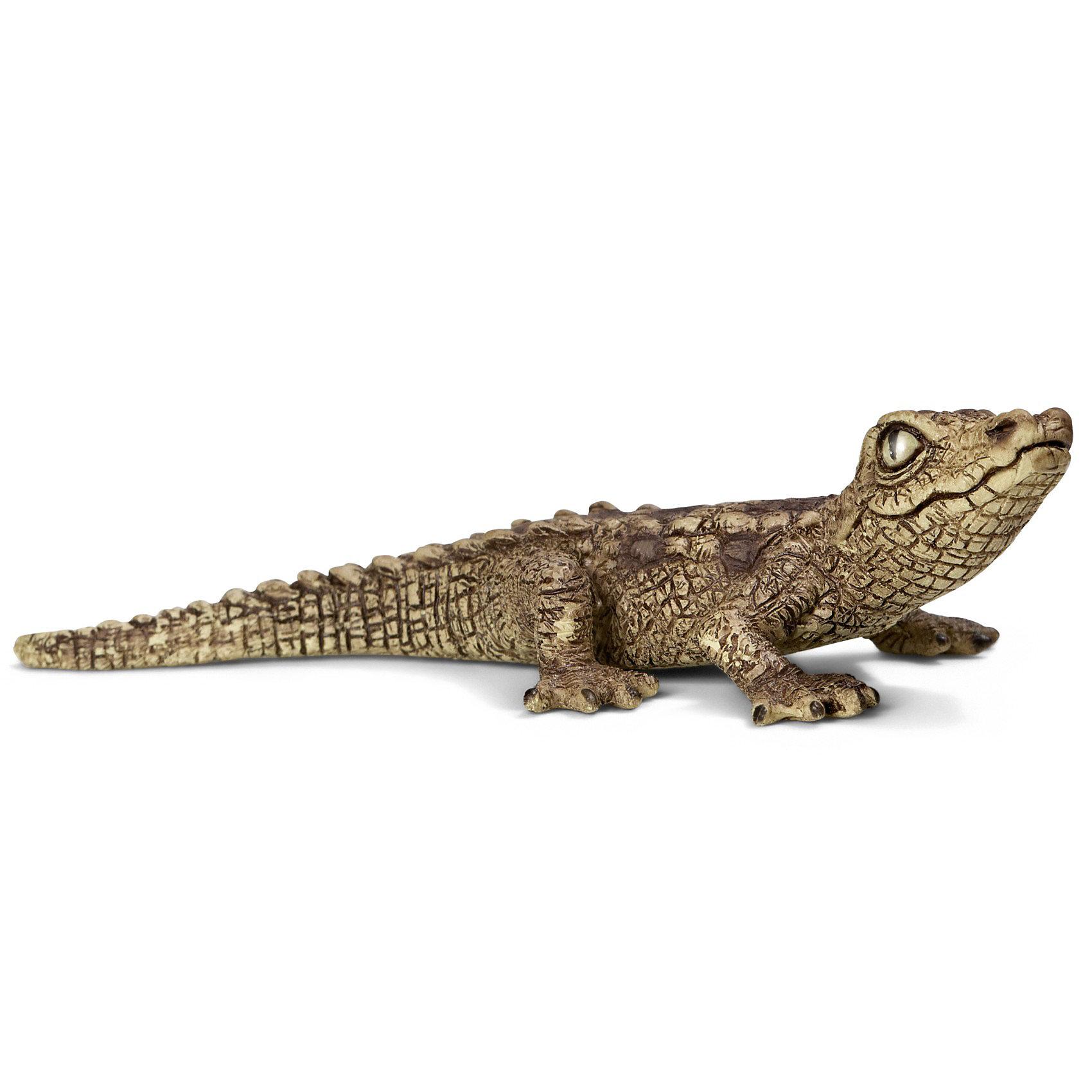 Schleich Крокодил, детеныш. Серия Дикие животныеSchleich (Шляйх) Крокодил, детеныш. Серия Дикие животные. Крокодилы являются крупнейшими рептилиями, обитающими в болотах, в которых они подстерегают свою добычу. Мощный хвост крокодила помогает ему легко двигаться как по суше, так и в воде. Интересно, что крокодил может жить до 100 лет.<br><br>Дополнительная информация:<br><br>-размеры (ДхШхВ): 2,7х5,3х13 см<br>-изготовлено из безопасного пластика<br><br>Фигурка из серии Дикие животные - это отличный подарок ребенку, который позволит рассказать и наглядно продемонстрировать разнообразие животного мира.<br><br>Игрушку Schleich (Шляйх) Крокодил, детеныш. Серия Дикие животные можно купить в нашем магазине.<br><br>Ширина мм: 61<br>Глубина мм: 50<br>Высота мм: 20<br>Вес г: 5<br>Возраст от месяцев: 36<br>Возраст до месяцев: 96<br>Пол: Унисекс<br>Возраст: Детский<br>SKU: 2609259
