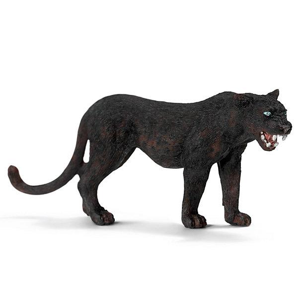 Schleich Черная пантера. Серия Дикие животныеМир животных<br>Schleich (Шляйх) Черная пантера из серии Дикие животные, которая широко распространена в Африке, Азии, Южной Европе и Южной Америке. Черная пантера – отличный ночной охотник, у нее острое зрение, прекрасный слух и развитое обоняние. Чтобы уберечь свою добычу от других хищников, пантера прячет ее на деревьях.<br><br>Дополнительная информация:<br><br>-размеры (ДхШхВ): 2,5х4,5х11,5 см<br>-игрушка разработана в тесном сотрудничестве с Берлинским зоопарком, поэтому имеет тщательно проработанные черты<br><br>Подарите ребенку маленький зоопарк от компании Schleich (Шляйх)!<br><br>Черную пантеру из серии Дикие животные вы можете купить в нашем магазине.<br><br>Ширина мм: 126<br>Глубина мм: 71<br>Высота мм: 22<br>Вес г: 33<br>Возраст от месяцев: 36<br>Возраст до месяцев: 96<br>Пол: Унисекс<br>Возраст: Детский<br>SKU: 2609264