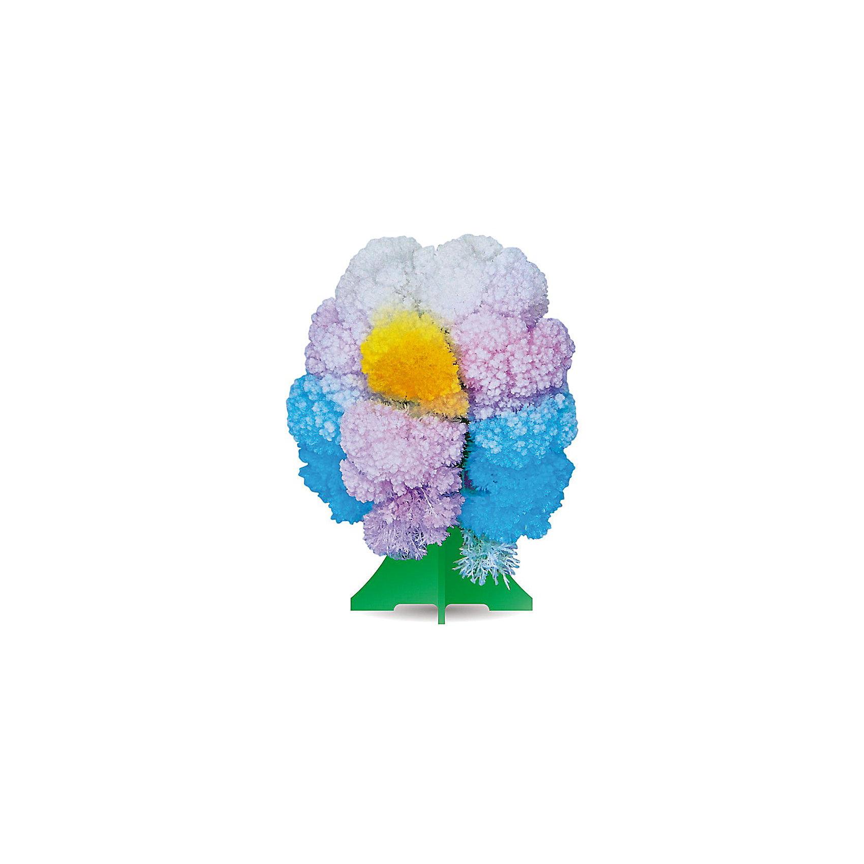GOOD HAND CD-011 Волшебное деревоВыращивание кристаллов<br>Данный набор позволит ребенку почувствовать себя настоящим ученым – и получить в результате несложных экспериментов не россыпь невзрачных хрусталиков, а волшебные, притягивающие восхищенные взгляды произведения искусства. В состав набора входят реактивы для выращивания кристаллов и бумажный каркас, который послужит основой будущей драгоценной конструкции. При смачивании раствором бумажной основы на ней буквально на глазах восхищенных детей вырастают пышные друзы ярких кристаллов, которые образуют форму ветвистого дерева. С помощью набора дети смогут прикоснуться к тайнам земных недр и собственными руками создать волшебную кристаллическую структуру, которая поразит друзей, станет истинным украшением интерьера или восхитительным подарком на праздник. Стоит лишь попробовать – и магия выращивания кристаллов увлечет не только детей, но и взрослых!<br><br>Основные особенности:<br>- Набор для выращивания на бумажной основе друзы кристаллов в форме разноцветного дерева.<br>- Набор пробуждает у ребенка интерес к естественным наукам, учит терпению, вниманию и аккуратности, закладывает базу для занятий прикладными ремеслами, развивает творческое мышление и художественный вкус.<br>- Выращивание кристаллов позволяет получить первые представления о большинстве естественных наук – физике, химии, геологии, минералогии.<br>- Набор включает иллюстрированную пошаговую инструкцию.<br>- Компоненты набора полностью безопасны для занятий под присмотром взрослых или самостоятельных занятий детей старше 12 лет.<br>- Законченную работу для предохранения от выцветания и предотвращения нежелательных последствий при контакте с кожей рекомендуется покрыть лаком.<br><br>Ширина мм: 212<br>Глубина мм: 100<br>Высота мм: 10<br>Вес г: 45<br>Возраст от месяцев: 96<br>Возраст до месяцев: 168<br>Пол: Унисекс<br>Возраст: Детский<br>SKU: 2609887