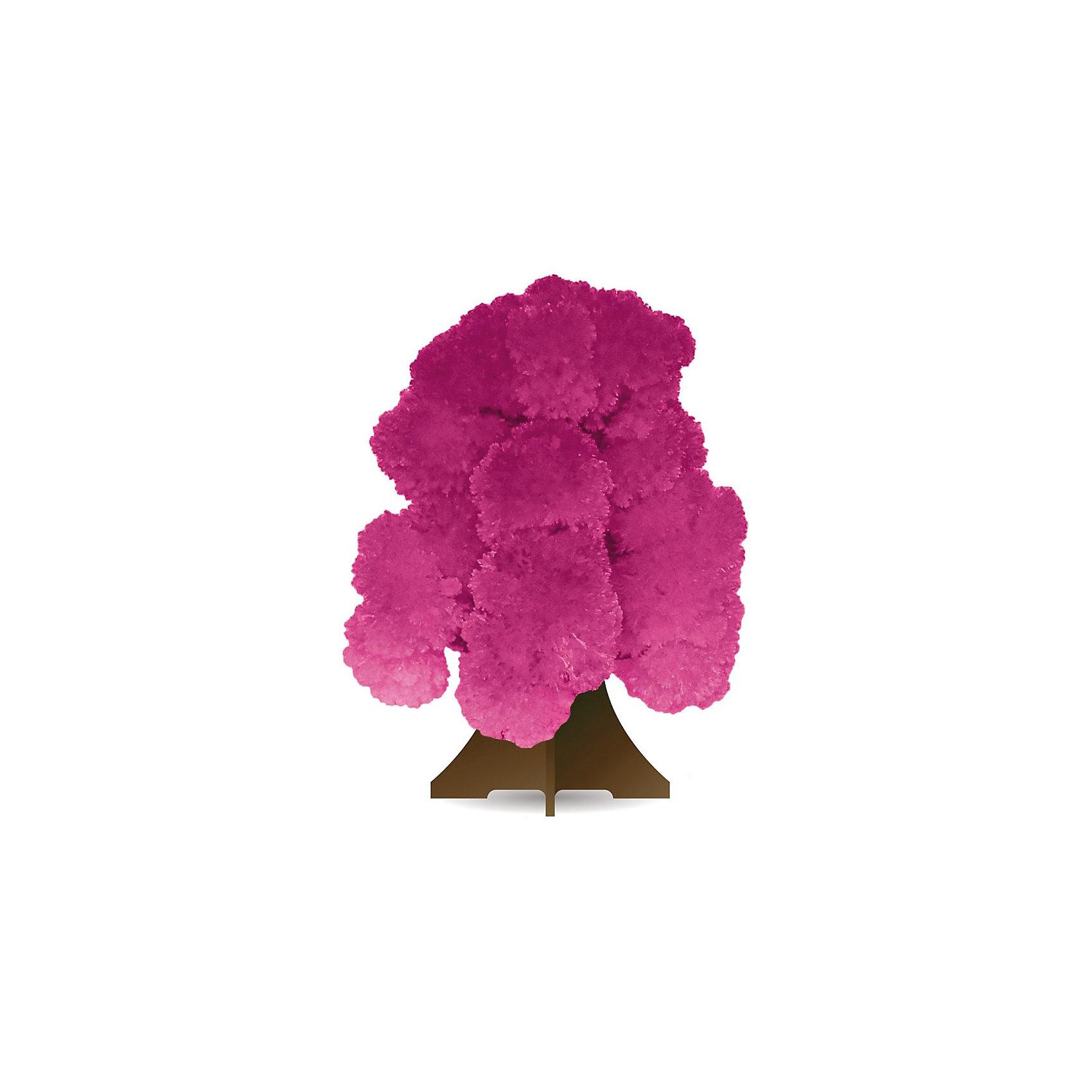 GOOD HAND CD-015 Волшебное деревоКристаллы<br>Данный набор позволит ребенку почувствовать себя настоящим ученым – и получить в результате несложных экспериментов не россыпь невзрачных хрусталиков, а волшебные, притягивающие восхищенные взгляды произведения искусства. В состав набора входят реактивы для выращивания кристаллов и бумажный каркас, который послужит основой будущей драгоценной конструкции. При смачивании раствором бумажной основы на ней буквально на глазах восхищенных детей вырастают пышные друзы пурпурных кристаллов, которые образуют форму ветвистого дерева. С помощью набора дети смогут прикоснуться к тайнам земных недр и собственными руками создать волшебную кристаллическую структуру, которая поразит друзей, станет истинным украшением интерьера или восхитительным подарком на праздник. Стоит лишь попробовать – и магия выращивания кристаллов увлечет не только детей, но и взрослых!<br><br>Основные особенности:<br>- Набор для выращивания на бумажной основе друзы кристаллов в форме дерева пурпурного цвета.<br>- Набор пробуждает у ребенка интерес к естественным наукам, учит терпению, вниманию и аккуратности, закладывает базу для занятий прикладными ремеслами, развивает творческое мышление и художественный вкус.<br>- Выращивание кристаллов позволяет получить первые представления о большинстве естественных наук – физике, химии, геологии, минералогии.<br>- Набор включает иллюстрированную пошаговую инструкцию.<br>- Компоненты набора полностью безопасны для занятий под присмотром взрослых или самостоятельных занятий детей старше 12 лет.<br>- Законченную работу для предохранения от выцветания и предотвращения нежелательных последствий при контакте с кожей рекомендуется покрыть лаком.<br><br>Ширина мм: 212<br>Глубина мм: 100<br>Высота мм: 10<br>Вес г: 45<br>Возраст от месяцев: 96<br>Возраст до месяцев: 168<br>Пол: Унисекс<br>Возраст: Детский<br>SKU: 2609888