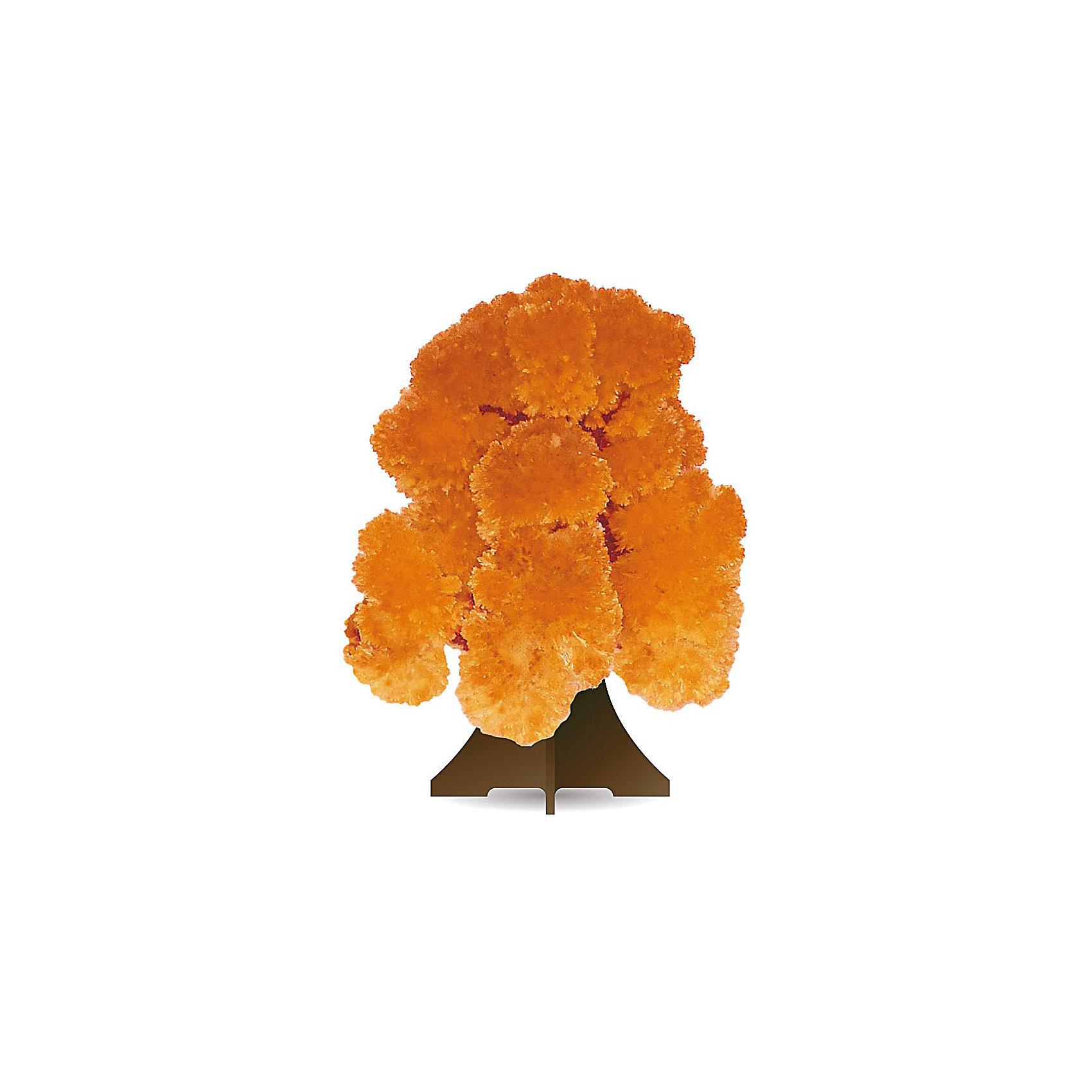 GOOD HAND CD-018 Волшебное деревоКристаллы<br>Данный набор позволит ребенку почувствовать себя настоящим ученым – и получить в результате несложных экспериментов не россыпь невзрачных хрусталиков, а волшебные, притягивающие восхищенные взгляды произведения искусства. В состав набора входят реактивы для выращивания кристаллов и бумажный каркас, который послужит основой будущей драгоценной конструкции. При смачивании раствором бумажной основы на ней буквально на глазах восхищенных детей вырастают пышные друзы кристаллов, которые образуют форму ветвистого дерева оранжевого цвета. С помощью набора дети смогут прикоснуться к тайнам земных недр и собственными руками создать волшебную кристаллическую структуру, которая поразит друзей, станет истинным украшением интерьера или восхитительным подарком на праздник. Стоит лишь попробовать – и магия выращивания кристаллов увлечет не только детей, но и взрослых!<br><br>Основные особенности:<br>- Набор для выращивания на бумажной основе друзы кристаллов в форме дерева оранжевого цвета.<br>- Набор пробуждает у ребенка интерес к естественным наукам, учит терпению, вниманию и аккуратности, закладывает базу для занятий прикладными ремеслами, развивает творческое мышление и художественный вкус.<br>- Выращивание кристаллов позволяет получить первые представления о большинстве естественных наук – физике, химии, геологии, минералогии.<br>- Набор включает иллюстрированную пошаговую инструкцию.<br>- Компоненты набора полностью безопасны для занятий под присмотром взрослых или самостоятельных занятий детей старше 12 лет.<br>- Законченную работу для предохранения от выцветания и предотвращения нежелательных последствий при контакте с кожей рекомендуется покрыть лаком.<br><br>Ширина мм: 212<br>Глубина мм: 100<br>Высота мм: 10<br>Вес г: 45<br>Возраст от месяцев: 96<br>Возраст до месяцев: 168<br>Пол: Унисекс<br>Возраст: Детский<br>SKU: 2609890