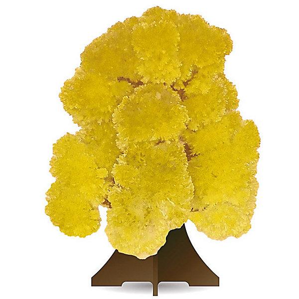 GOOD HAND CD-019 Волшебное деревоВыращивание кристаллов<br>Данный набор позволит ребенку почувствовать себя настоящим ученым – и получить в результате несложных экспериментов не россыпь невзрачных хрусталиков, а волшебные, притягивающие восхищенные взгляды произведения искусства. В состав набора входят реактивы для выращивания кристаллов и бумажный каркас, который послужит основой будущей драгоценной конструкции. При смачивании раствором бумажной основы на ней буквально на глазах восхищенных детей вырастают пышные друзы кристаллов, которые образуют форму ветвистого дерева желтого цвета. С помощью набора дети смогут прикоснуться к тайнам земных недр и собственными руками создать волшебную кристаллическую структуру, которая поразит друзей, станет истинным украшением интерьера или восхитительным подарком на праздник. Стоит лишь попробовать – и магия выращивания кристаллов увлечет не только детей, но и взрослых!<br><br>Основные особенности:<br>- Набор для выращивания на бумажной основе друзы кристаллов в форме дерева желтого цвета.<br>- Набор пробуждает у ребенка интерес к естественным наукам, учит терпению, вниманию и аккуратности, закладывает базу для занятий прикладными ремеслами, развивает творческое мышление и художественный вкус.<br>- Выращивание кристаллов позволяет получить первые представления о большинстве естественных наук – физике, химии, геологии, минералогии.<br>- Набор включает иллюстрированную пошаговую инструкцию.<br>- Компоненты набора полностью безопасны для занятий под присмотром взрослых или самостоятельных занятий детей старше 12 лет.<br>- Законченную работу для предохранения от выцветания и предотвращения нежелательных последствий при контакте с кожей рекомендуется покрыть лаком.<br><br>Ширина мм: 212<br>Глубина мм: 100<br>Высота мм: 10<br>Вес г: 45<br>Возраст от месяцев: 96<br>Возраст до месяцев: 168<br>Пол: Унисекс<br>Возраст: Детский<br>SKU: 2609891