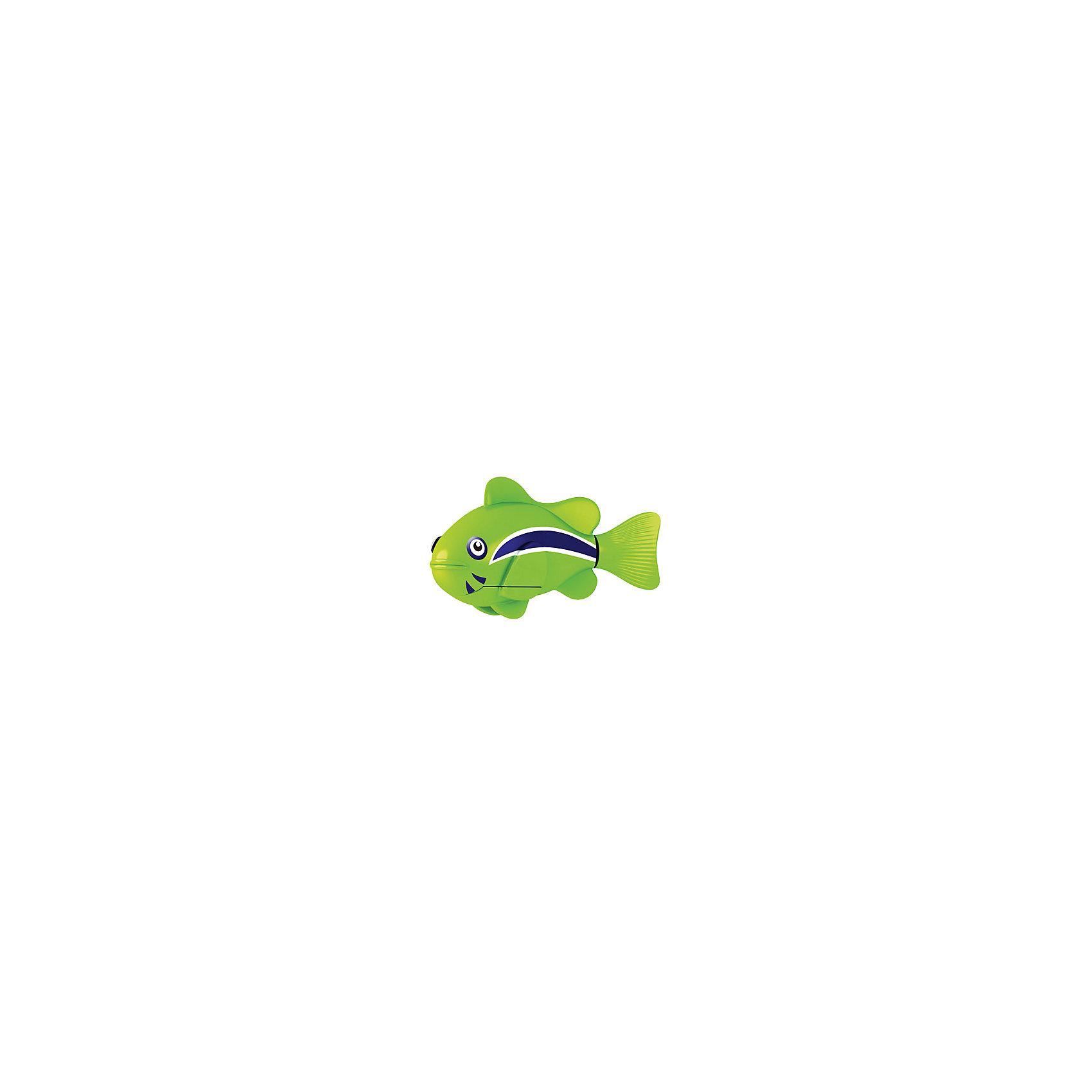 РобоРыбка Клоун зеленая, RoboFishРоборыбки<br>Зеленая Рыбка клоун при погружении в аквариум или другою емкостью с водой РобоРыбка начинает плавать – опускаясь ко дну и поднимаясь к поверхности воды. Игрушка работает от двух алкалиновых батареек А76 или RL44, которые входят в комплект (две установлены в игрушку и 2 запасные)<br><br>Ширина мм: 435<br>Глубина мм: 405<br>Высота мм: 240<br>Вес г: 216<br>Возраст от месяцев: 60<br>Возраст до месяцев: 144<br>Пол: Унисекс<br>Возраст: Детский<br>SKU: 2999503