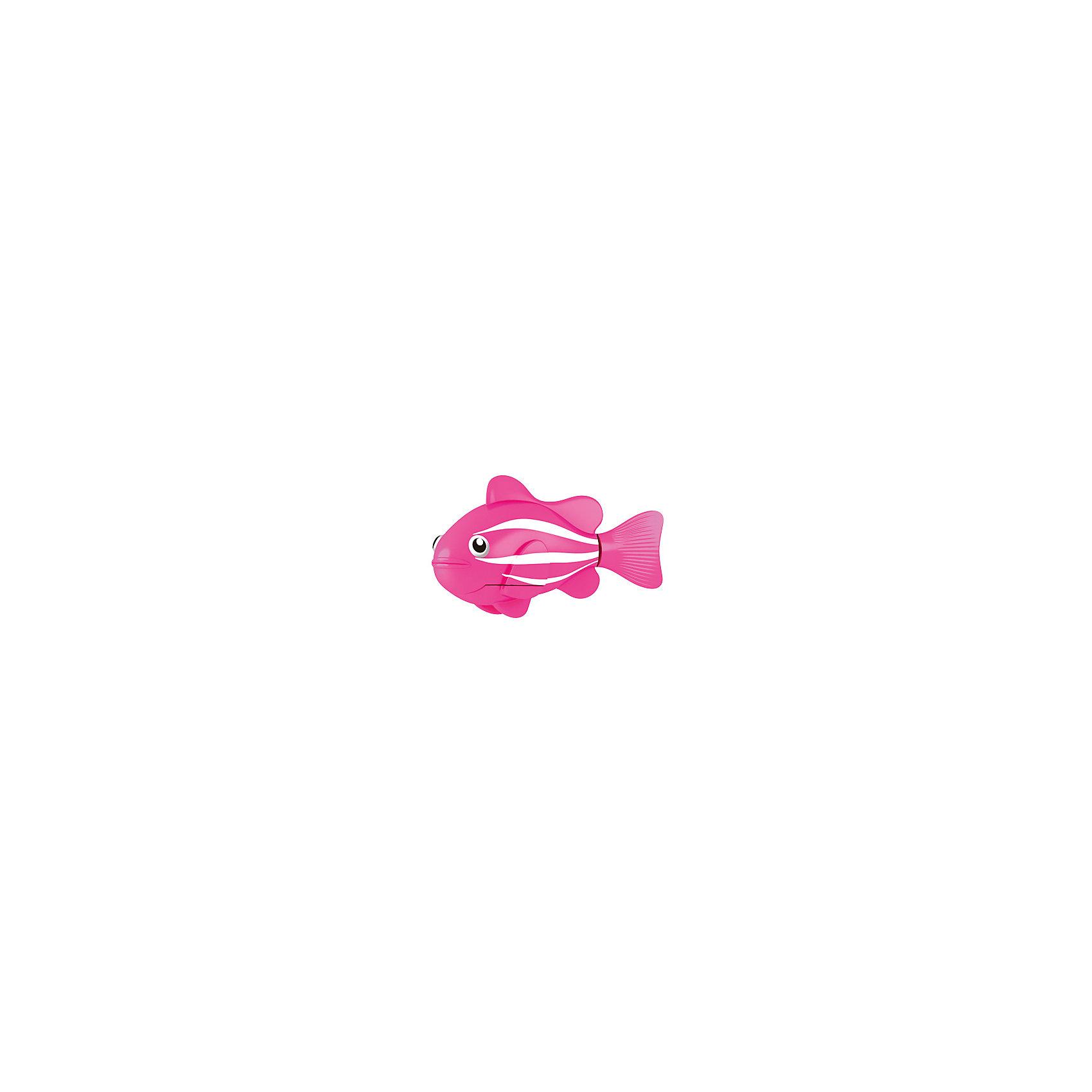 РобоРыбка Клоун розовая, RoboFishРоборыбки и русалки<br>Розовая Рыбка клоун при погружении в аквариум или другою емкостью с водой РобоРыбка начинает плавать – опускаясь ко дну и поднимаясь к поверхности воды. Игрушка работает от двух алкалиновых батареек А76 или RL44, которые входят в комплект (две установлены в игрушку и 2 запасные)<br><br>Ширина мм: 435<br>Глубина мм: 405<br>Высота мм: 240<br>Вес г: 216<br>Возраст от месяцев: 60<br>Возраст до месяцев: 144<br>Пол: Унисекс<br>Возраст: Детский<br>SKU: 2999504