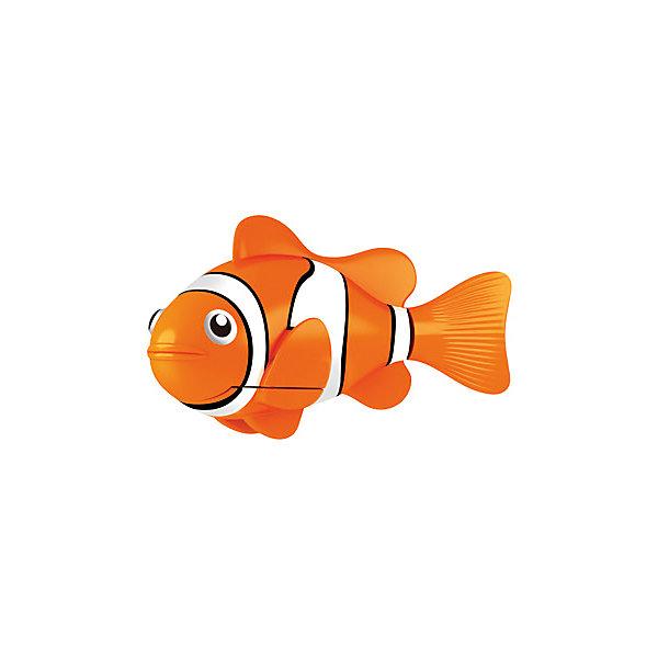 РобоРыбка Клоун желтая, RoboFishРоборыбки<br>Робо-рыбка Желтая от Zuru.<br>Замечательная желтая Рыбка клоун при погружении в аквариум или другою емкостью с водой РобоРыбка начинает плавать – опускаясь ко дну и поднимаясь к поверхности воды.<br><br>Дополнительная информация:<br><br>- Игрушка работает от 2-х алкалиновых батареек А76 или RL44, которые входят в комплект (две установлены в игрушку и 2 запасные).<br>- Масса: 68 г<br>- Длина рыбки: 7,5 см<br>- Робо-рыбка быстро плавает, шумит хвостиком, издавая приятный успокаивающий шум.<br><br>Собери свой  аквариум с роборыбками !<br><br>Робо-рыбку можно купить в нашем интернет - магазине.<br>Ширина мм: 435; Глубина мм: 405; Высота мм: 240; Вес г: 216; Возраст от месяцев: 60; Возраст до месяцев: 144; Пол: Унисекс; Возраст: Детский; SKU: 2999506;