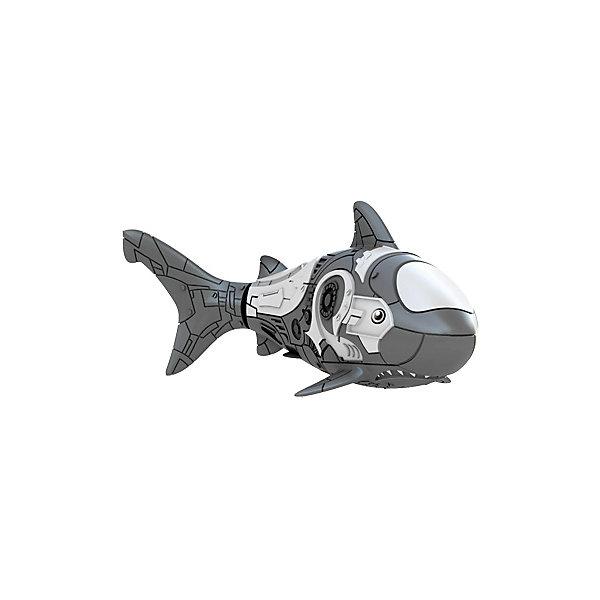 РобоРыбка Акула серая, RoboFishРоборыбки<br>РобоРыбка серая акула при погружении в аквариум или другою емкостью с водой РобоРыбка начинает плавать – опускаясь ко дну и поднимаясь к поверхности воды.<br><br>Дополнительная информация:<br><br>- Игрушка работает от двух батареек А76 или RL44, которые входят в комплект<br>- Длина рыбки 8,4 см. Изготовлено из пластмассы, с элементами из резины и металла. <br><br>Робо-рыбку Серая Акула можно купить в нашем магазине.<br><br>Ширина мм: 435<br>Глубина мм: 405<br>Высота мм: 240<br>Вес г: 216<br>Возраст от месяцев: 60<br>Возраст до месяцев: 144<br>Пол: Унисекс<br>Возраст: Детский<br>SKU: 2999507