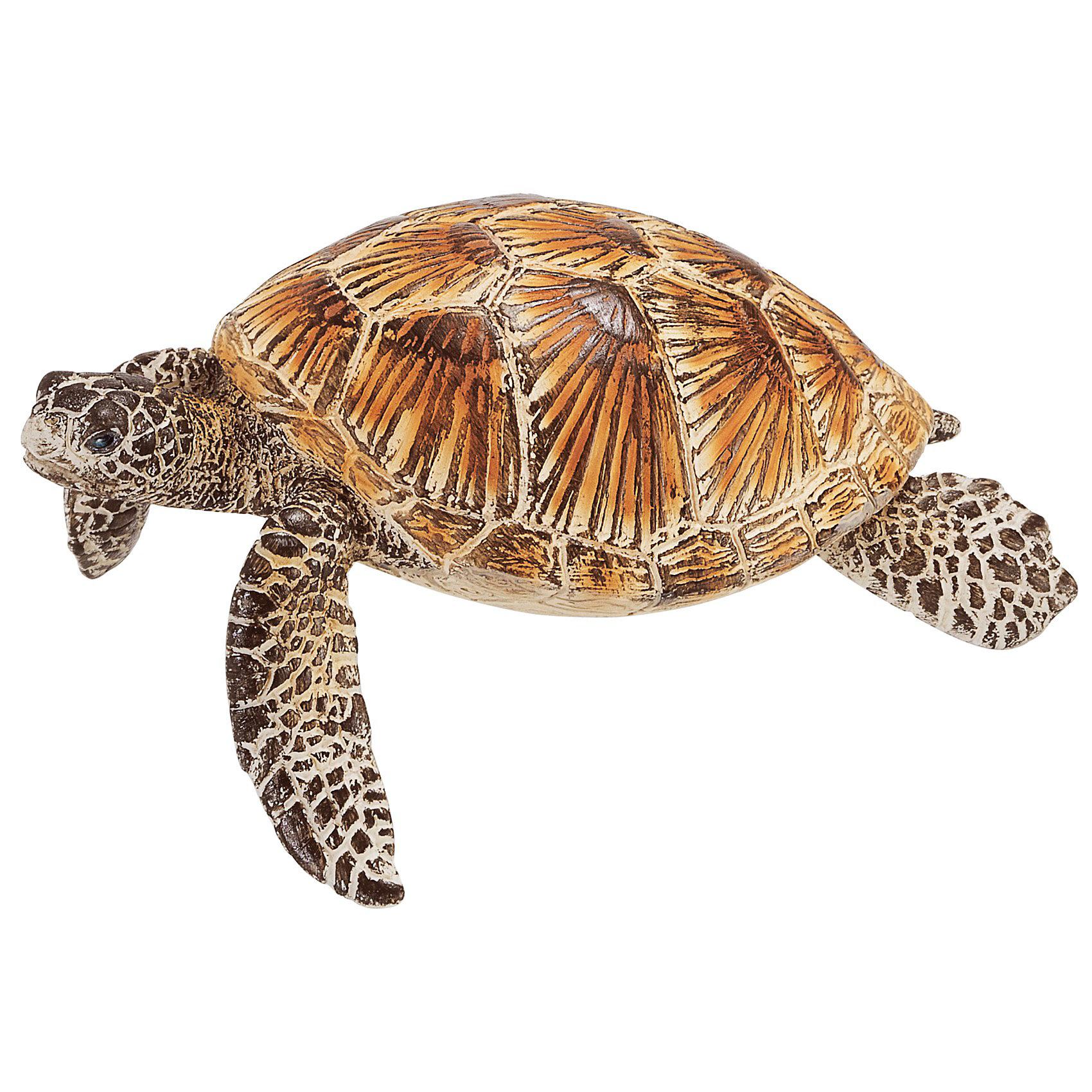 Морская черепаха, SchleichМир животных<br>Морская черепаха прекрасно адаптирована для жизни в воде. У нее обтекаемое туловище и лапы в виде ласт, что позволяет черепахе довольно быстро плавать. Ее движения под водой напоминают полет птицы в небе. Интересно, что морская черепаха не может спрятать свою большую голову в панцирь. <br>За исключением того времени, когда они откладывают яйца, черепахи проводят всю свою жизнь в тропических и субтропических водах, где они охотятся на головоногих, крабов и медуз.<br><br>Дополнительная информация:<br><br>- Размер: 5.5 ? 8 ? 3.5 см<br>- Материал: каучуковый пластик<br><br>Фигурку Морской черепахи, Schleich (Шляйх) можно купить в нашем магазине.<br><br>Ширина мм: 92<br>Глубина мм: 55<br>Высота мм: 35<br>Вес г: 31<br>Возраст от месяцев: 36<br>Возраст до месяцев: 96<br>Пол: Унисекс<br>Возраст: Детский<br>SKU: 3164139