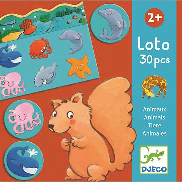 Детское лото Животные, DJECOЛото<br>Лото Животные развивает память, внимательность, мелкую моторику рук, помогает развивать устную речь малышей, и дает начальные представления о животных и их среде обитания. <br><br>В комплекте 5 игровых полей, изображающих среду обитания животных, и 30 карточек - силуэтов животных для размещения на игровых полях. <br>Животные распределены на 5 групп: лесные жители, обитатели джунглей, водные животные. В ходе игры ребенок составляет небольшой сюжет жизни лесных обитателей. <br><br>Дополнительная информация:<br><br>- В набор входит: 5 игровых полей и 30 фишек с изображениями различных животных. <br><br><br>Детское лото Животные, DJECO (Джеко) можно купить в нашем магазине.<br><br>Ширина мм: 220<br>Глубина мм: 220<br>Высота мм: 60<br>Вес г: 500<br>Возраст от месяцев: 24<br>Возраст до месяцев: 36<br>Пол: Унисекс<br>Возраст: Детский<br>SKU: 3193412