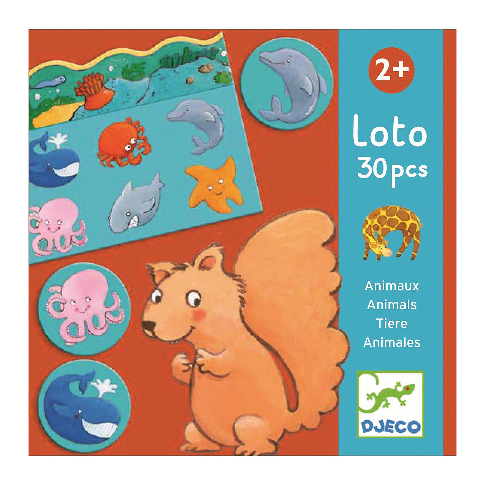 DJECO Детское лото Животные, DJECO djeco игра тактильное лото животные djeco