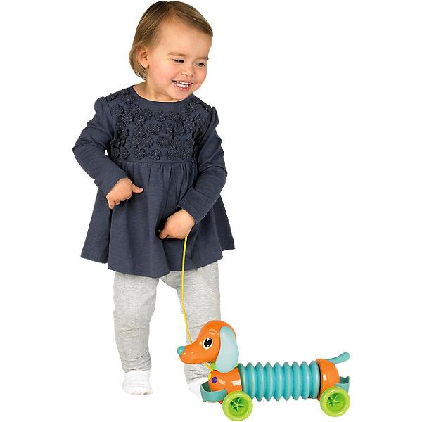 Музыкальный щенок Марли, TOMYДетские музыкальные инструменты<br>Музыкальный щенок Марли, Tomy (Томи) обязательно порадует Вашего малыша. Игрушка представляет собой забавную собачку с туловищем-гармошкой. Спереди и сзади имеются удобные ручки, держась за которые можно играть на гармошке, а в передней части есть кнопочки, нажимая на которые будут слышны дополнительные звуки. Игрушка-каталка оснащена веревочкой, за которую малышу будет очень удобно катать щенка. Игрушка способствует развитию моторики, слухового и визуального восприятия.<br><br>Дополнительная информация:<br><br>- Материал: пластик.<br>- Размеры упаковки: 14 х 21 х 38 см. <br>- Вес: 1 кг.<br><br>Музыкального щенка Марли, Tomy (Томи) можно купить в нашем интернет-магазине.<br>Ширина мм: 340; Глубина мм: 150; Высота мм: 210; Вес г: 2250; Возраст от месяцев: 18; Возраст до месяцев: 24; Пол: Унисекс; Возраст: Детский; SKU: 3232811;