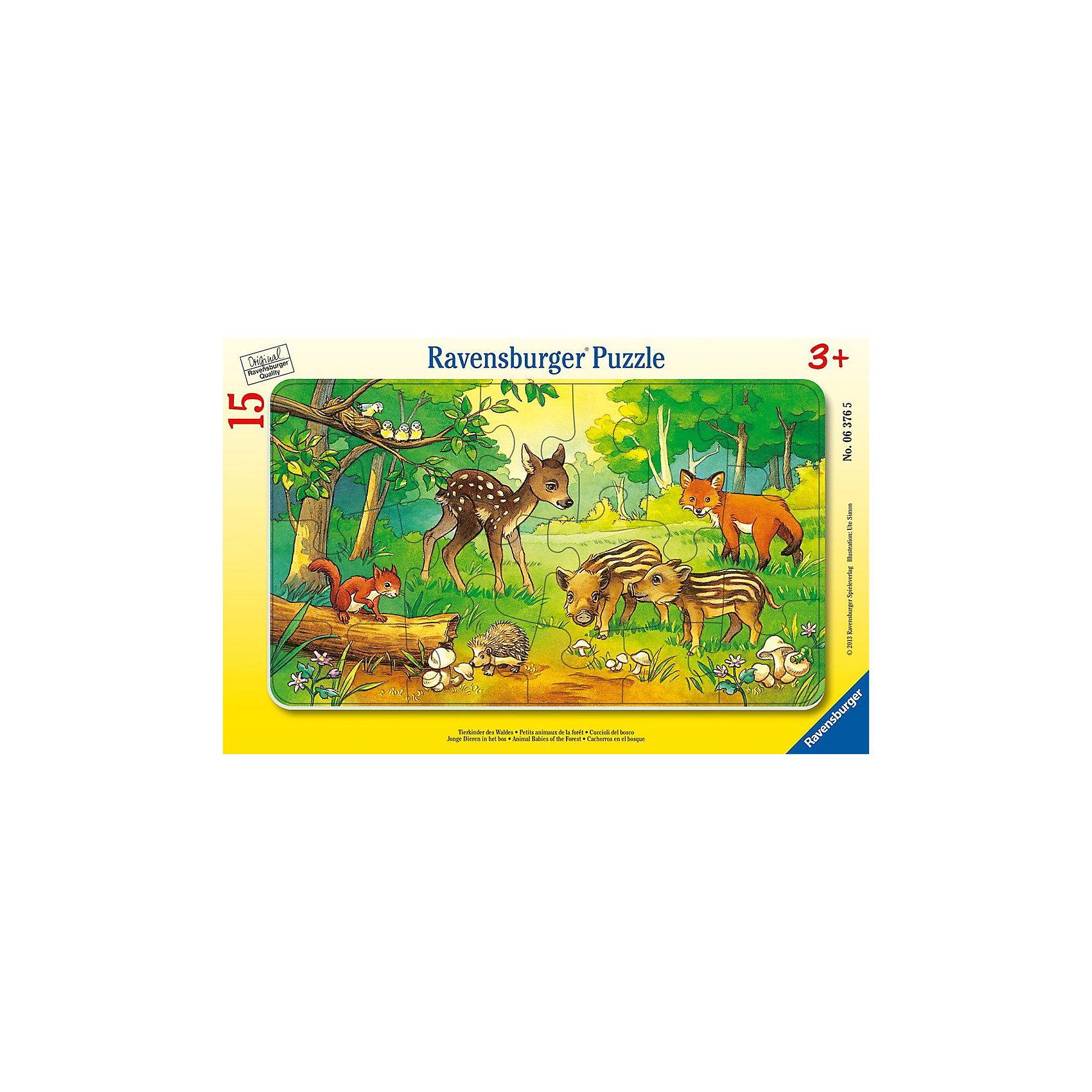 Пазл в рамке «Детеныши животных в лесу», 15 деталей, RavensburgerПазл в рамке Детёныши животных в лесу - это отличный способ развития для вашего ребёнка. Красивый лесной пейзаж и милые зверята( олененок, ежонок, бельчонок, два кабанчика и лисенок ) вызовут у ребенка положительные эмоции. Пазл оснащен достаточно яркими элементами, все они выполнены из качественного картона. Эту развивающую игрушку удобно собирать, все детали легко вписываются в единую картинку, которая не потеряет свой цвет и еще долго будет радовать глаз вашего малыша. Данный пазл развивает у детей моторику рук, память, наблюдательность, усидчивость, восприятие картинки, а также любовь к животному миру и природе. Пазл в рамке станет не только полезным, но и интересным подарком для вашего ребёнка.<br><br>В пазл входит:<br>-15 деталей<br><br>Дополнительная информация<br>-Размер картинки – 25*14,5 см <br>-Размер упаковки – 29,5*19 см<br>-Возраст: от 3 лет<br>-Для мальчиков и девочек<br>-Состав: картон, бумага<br>-Бренд: Ravensburger (Равенсбургер)<br>-Страна обладатель бренда: Германия<br><br>Ширина мм: 299<br>Глубина мм: 190<br>Высота мм: 5<br>Вес г: 155<br>Возраст от месяцев: 36<br>Возраст до месяцев: 60<br>Пол: Унисекс<br>Возраст: Детский<br>Количество деталей: 15<br>SKU: 3284559